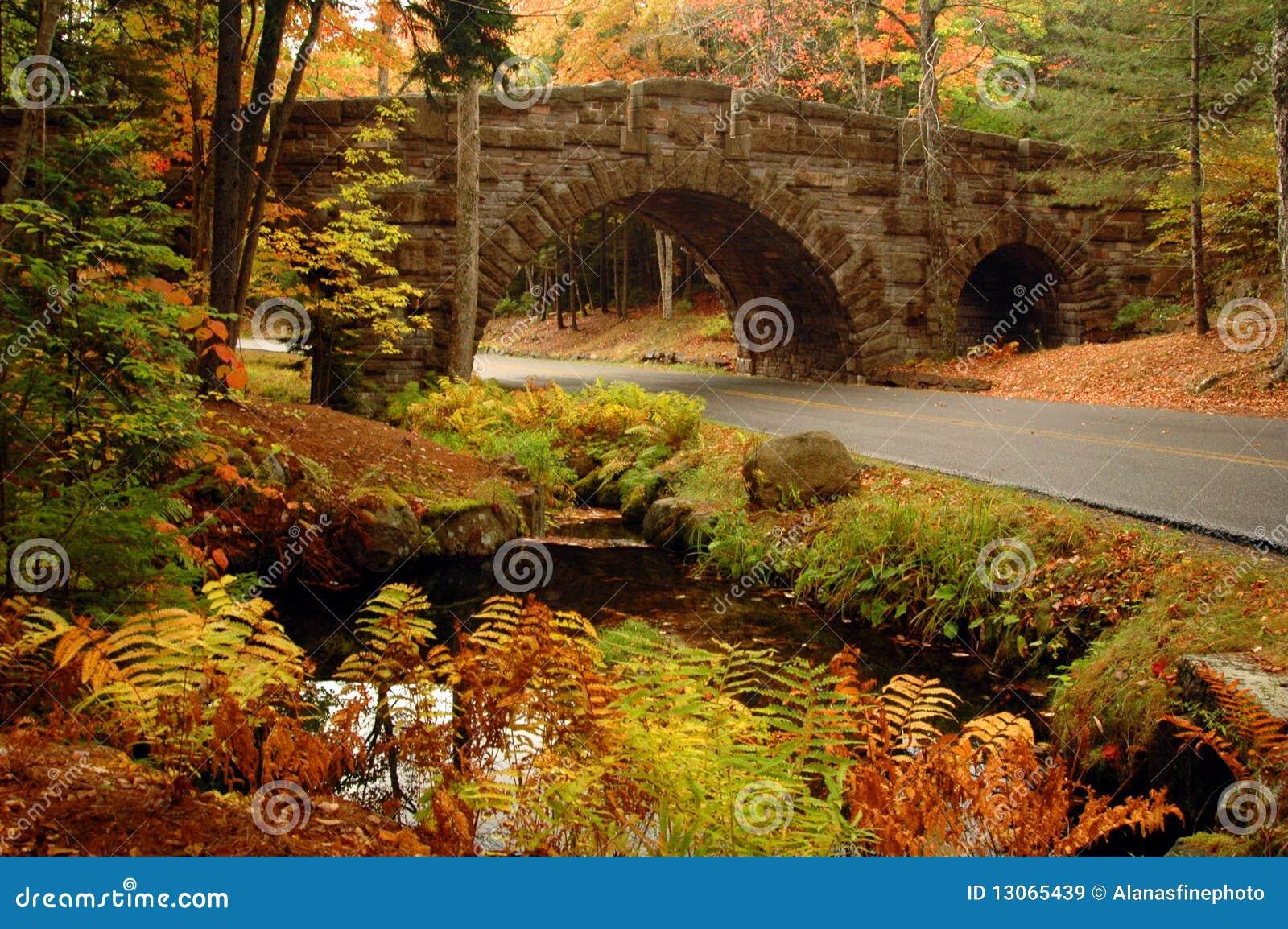 Acadia wysklepiający mosta kamień