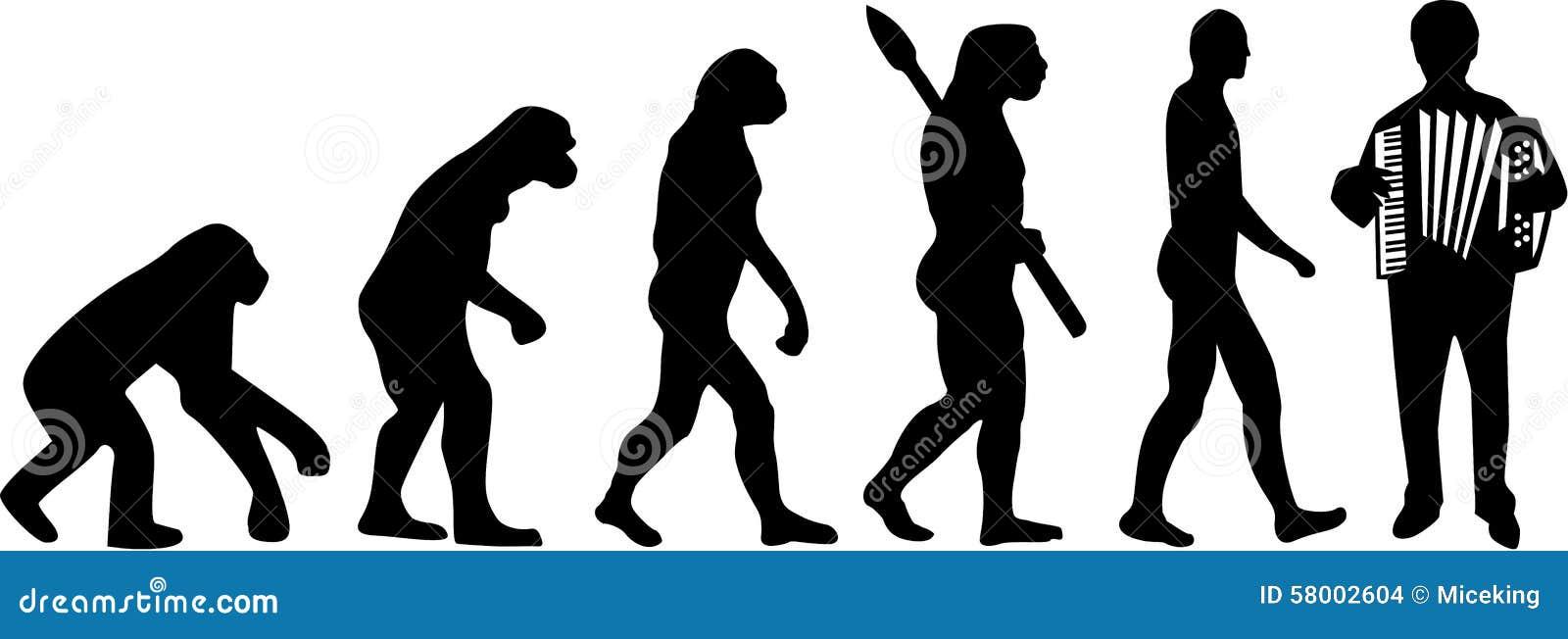 Accordion Evolution