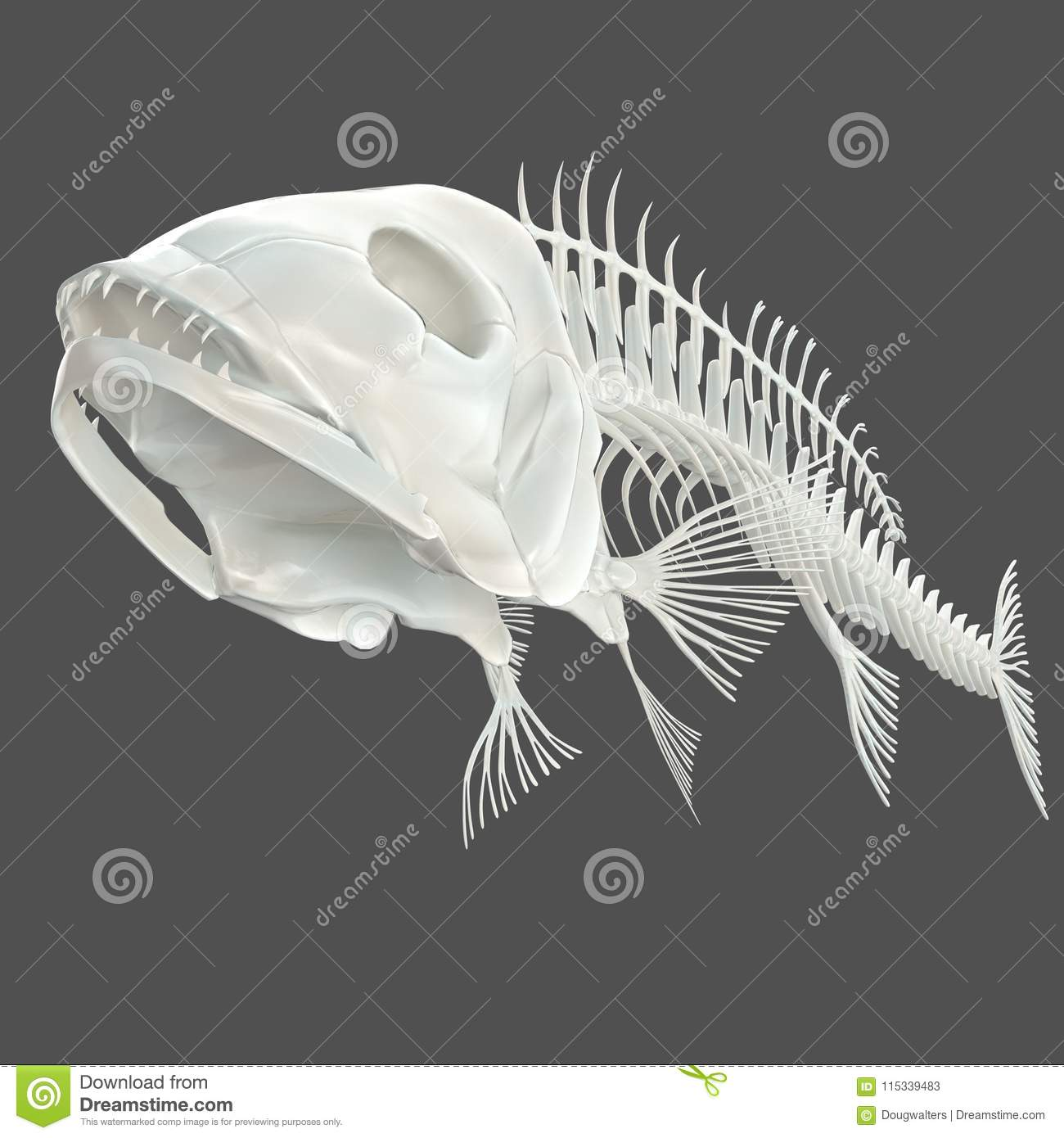 Fish Skeleton Stock Illustrations – 1,747 Fish Skeleton Stock ...