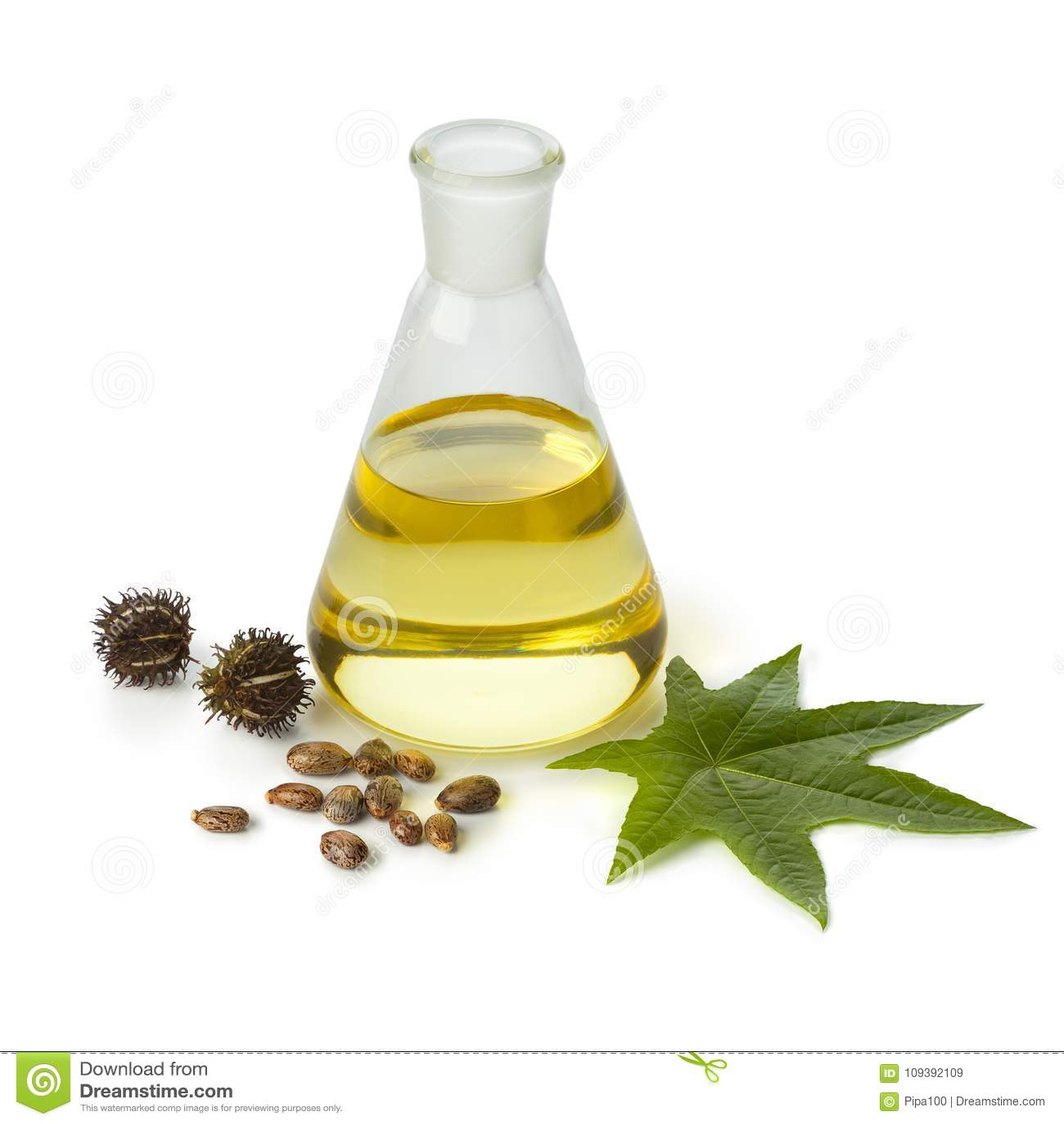 Aceite de ricino de Botlle con la fruta, las semillas y la hoja