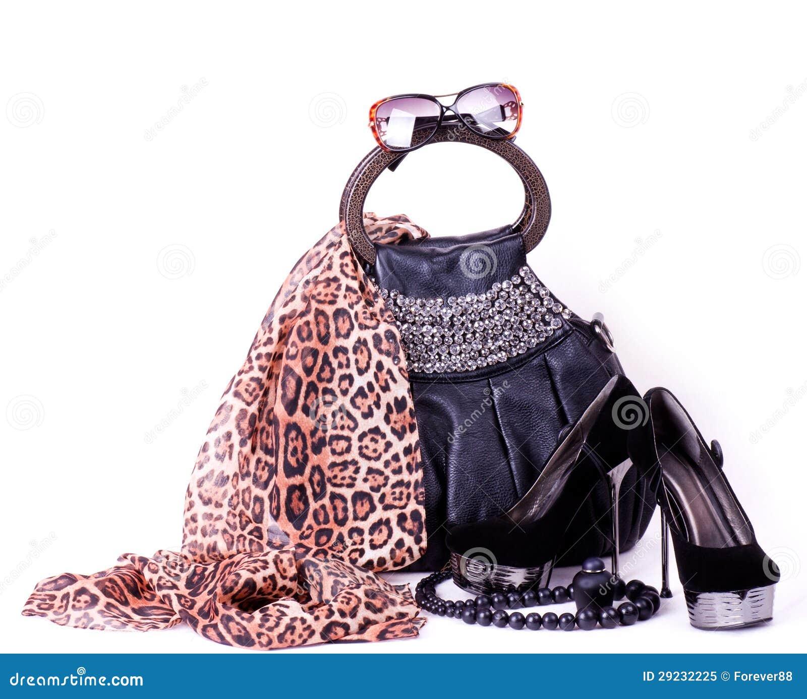 Download Acessórios elegantes imagem de stock. Imagem de elegance - 29232225