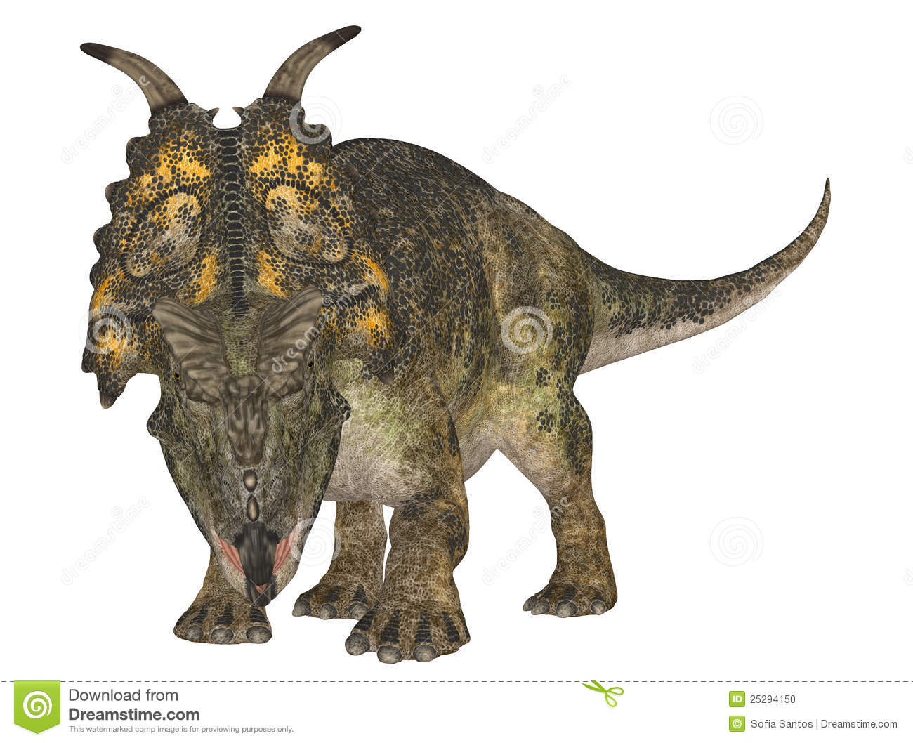 Illustration of a Achelousaurus (dinosaur species) isolated on a white ...