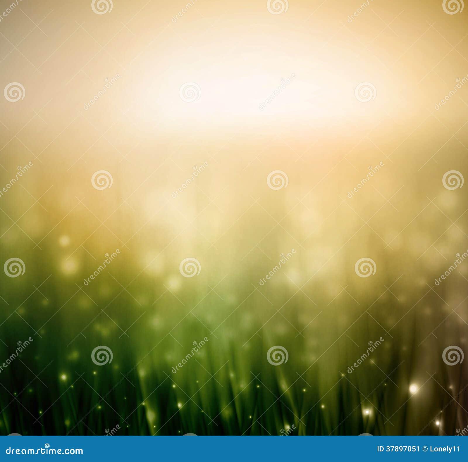 Achtergrond met gras