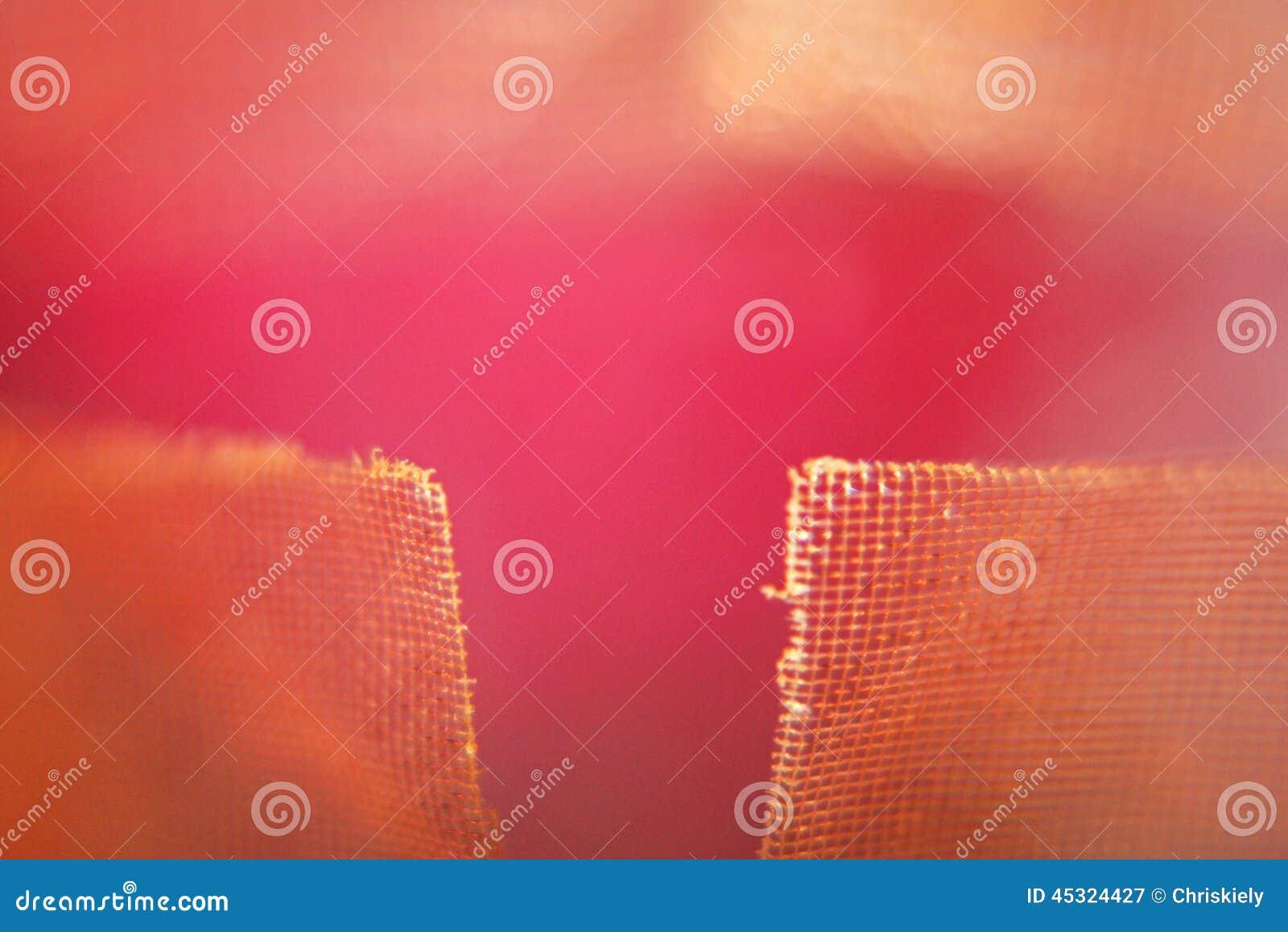 Achtergrond Roze tonen en netwerk