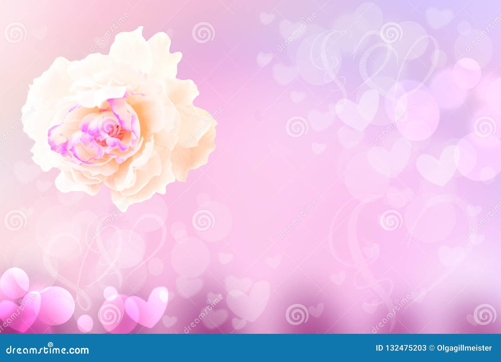 Achtergrond van de bloem de abstracte feestelijke pastelkleur Een wit nam bloesem toe