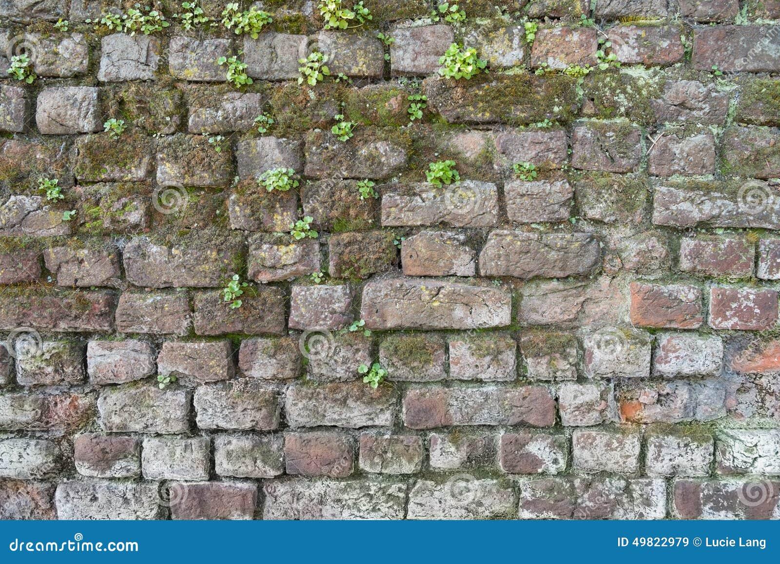 Favoriete Grijze bakstenen muur stock afbeelding. Afbeelding bestaande uit  MK59
