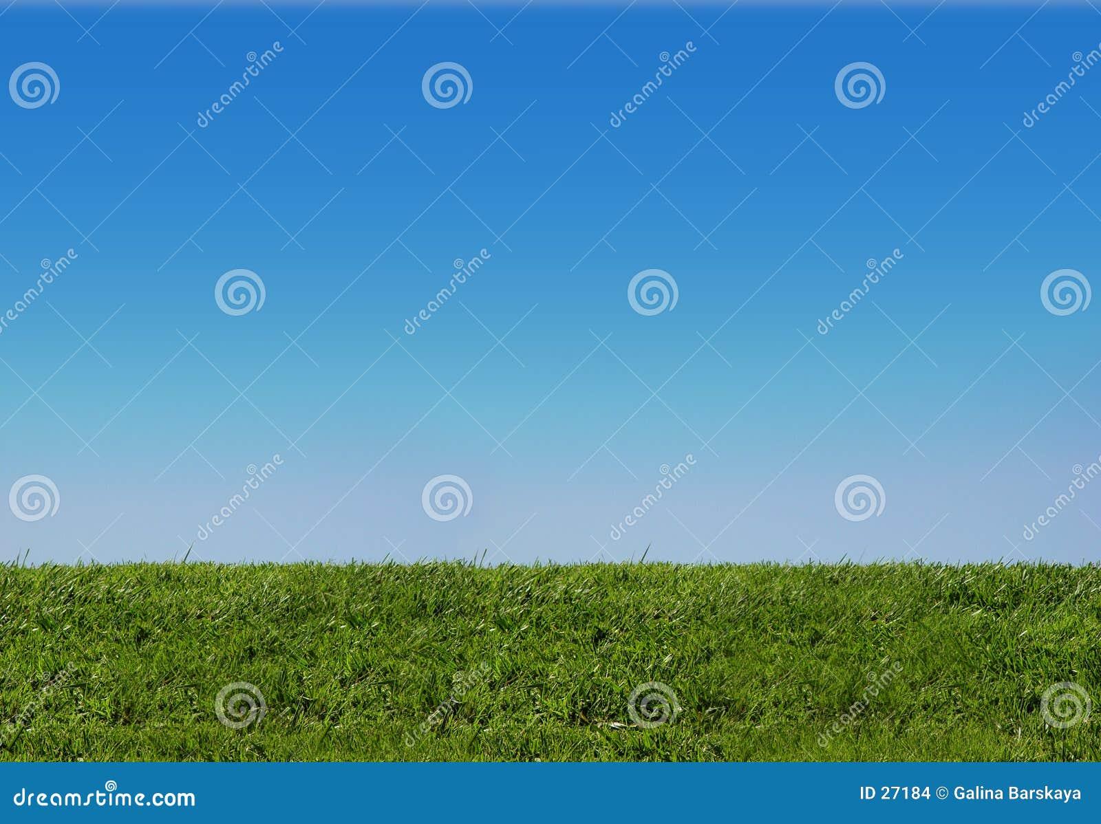Achtergrond van hemel en gras