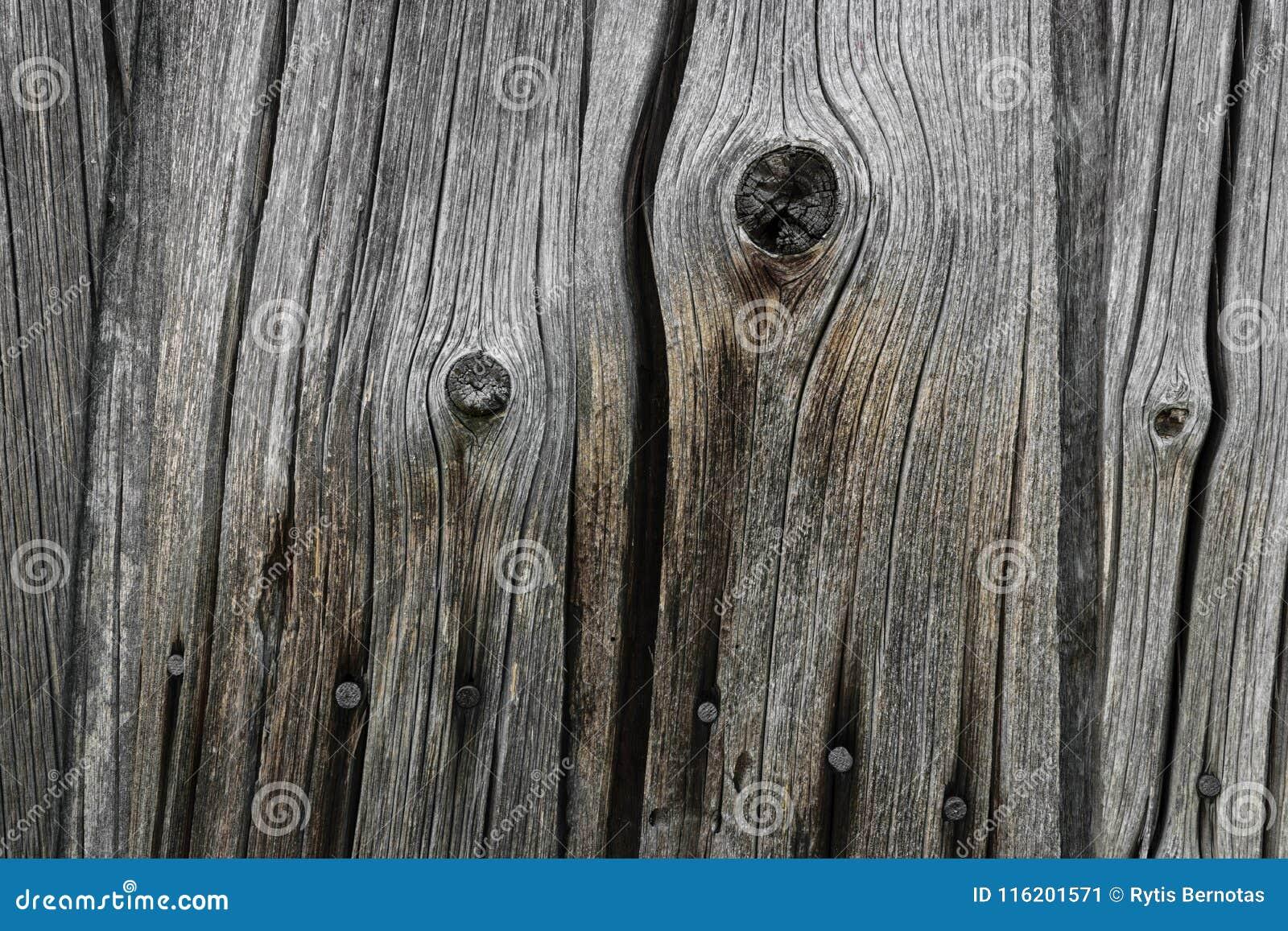 Achtergrond van zeer Oude Houten Raadsmuur met Rusty Nails
