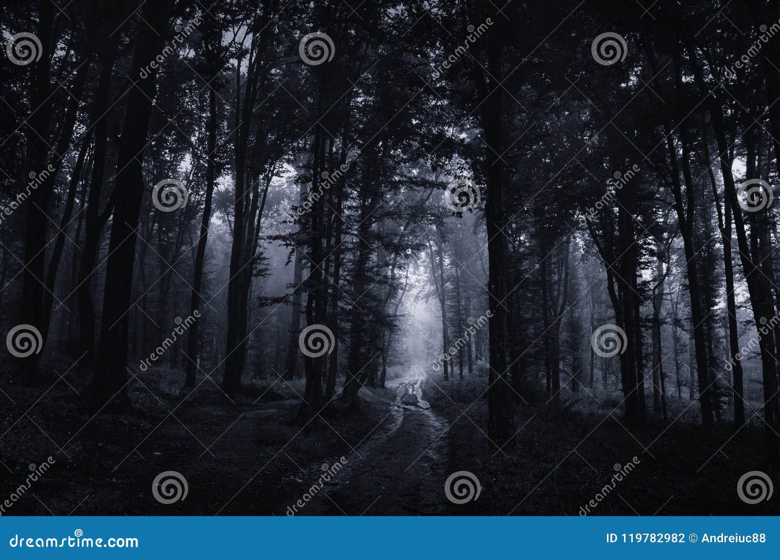 Achtervolgd bos bij nacht met weg die door griezelige bomen gaan