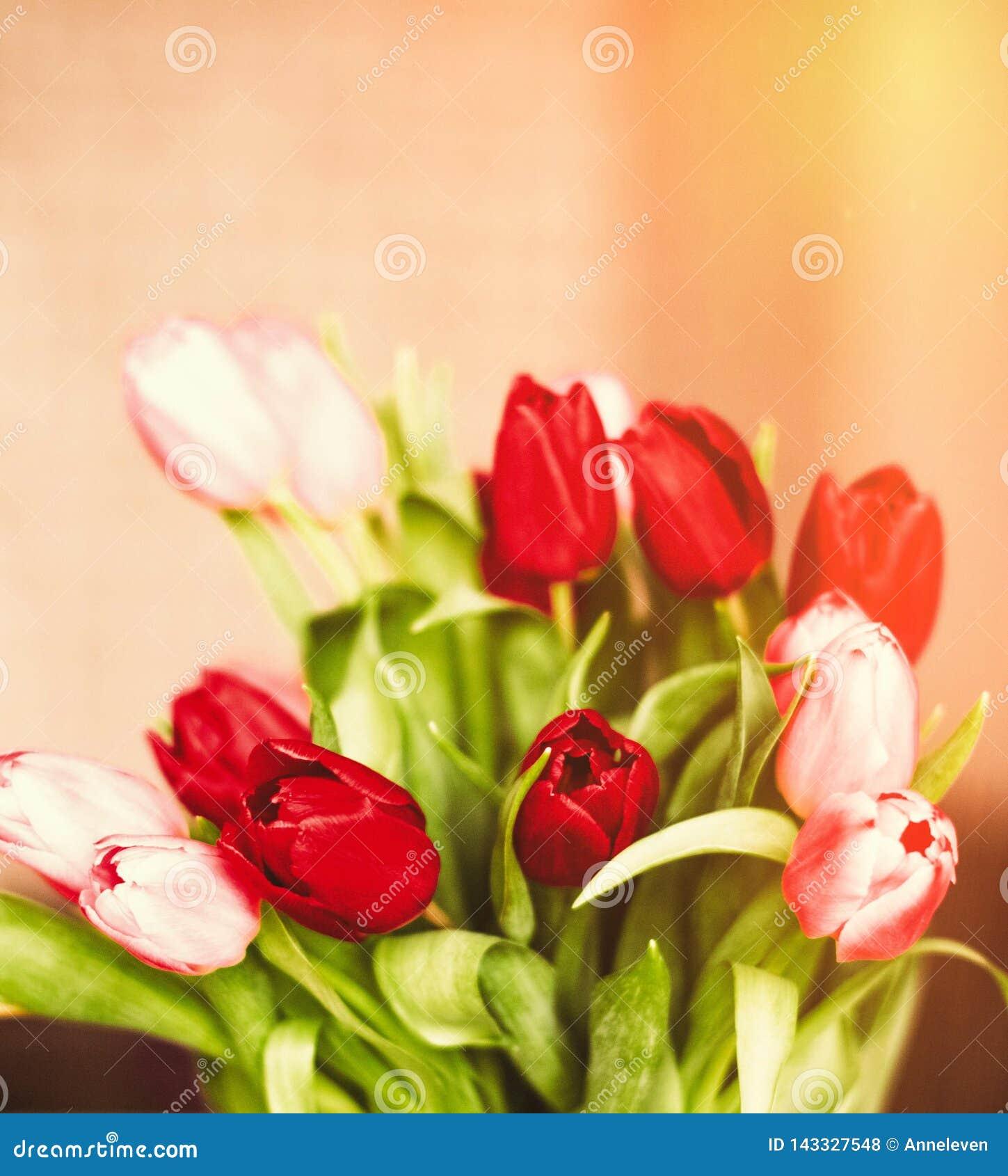 Aclare encima de su día con las flores