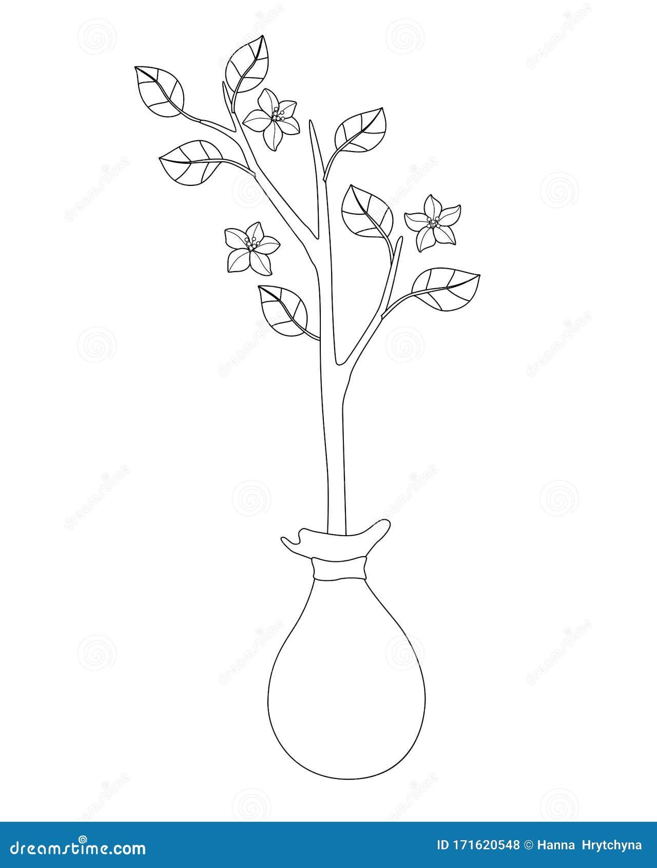 Acoplamiento Con Hojas Y Flores Preparadas Para La Plantación En El Jardín  De Primavera - Imagen Lineal Vectorial Para Colorear E Ilustración del  Vector - Ilustración de hojas, imagen: 171620548
