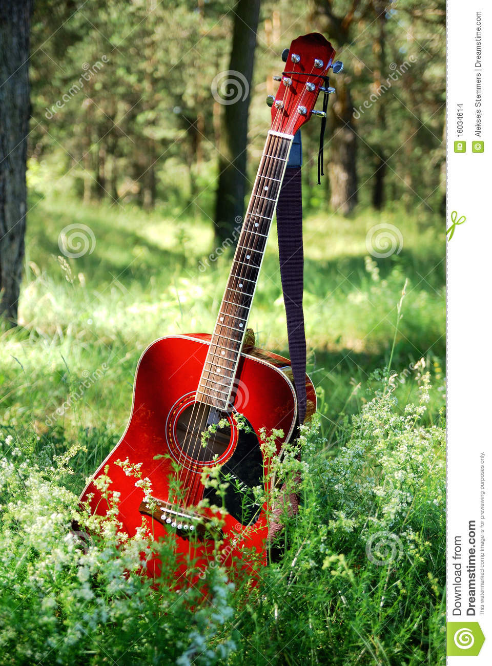 Acoustic Guitar In The Grass Stock Photo Image 16034614