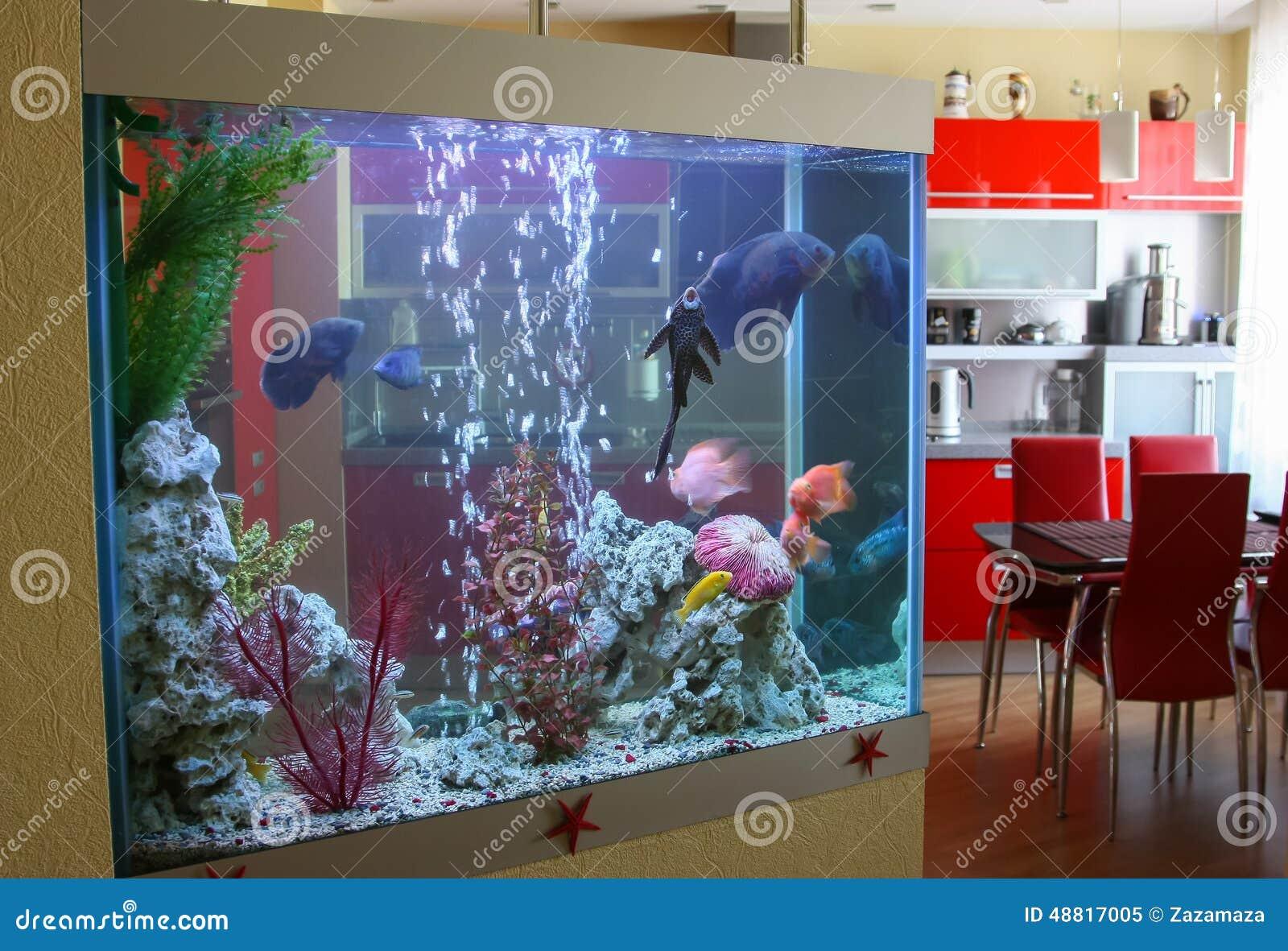 acquario casa prezzi ~ acquario decorazione paesaggio simulazione ... - Acquario Casa Funzionamento E Prezzi
