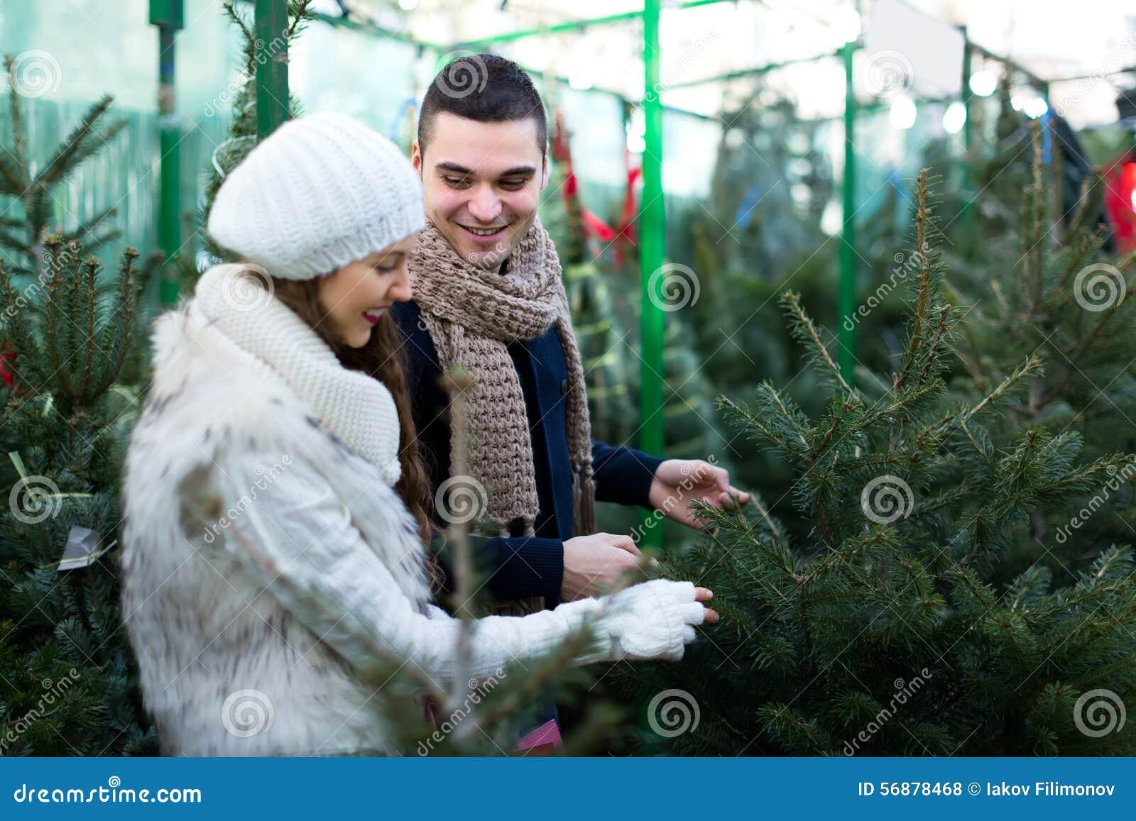 Acquisto dell albero del nuovo anno