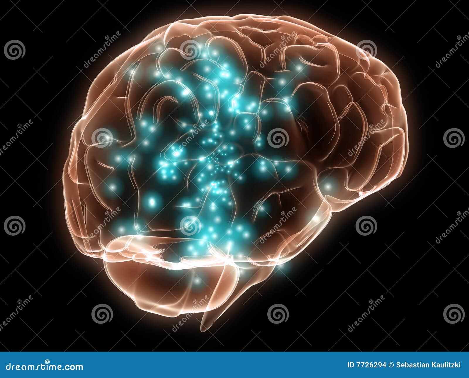 Actieve menselijke hersenen
