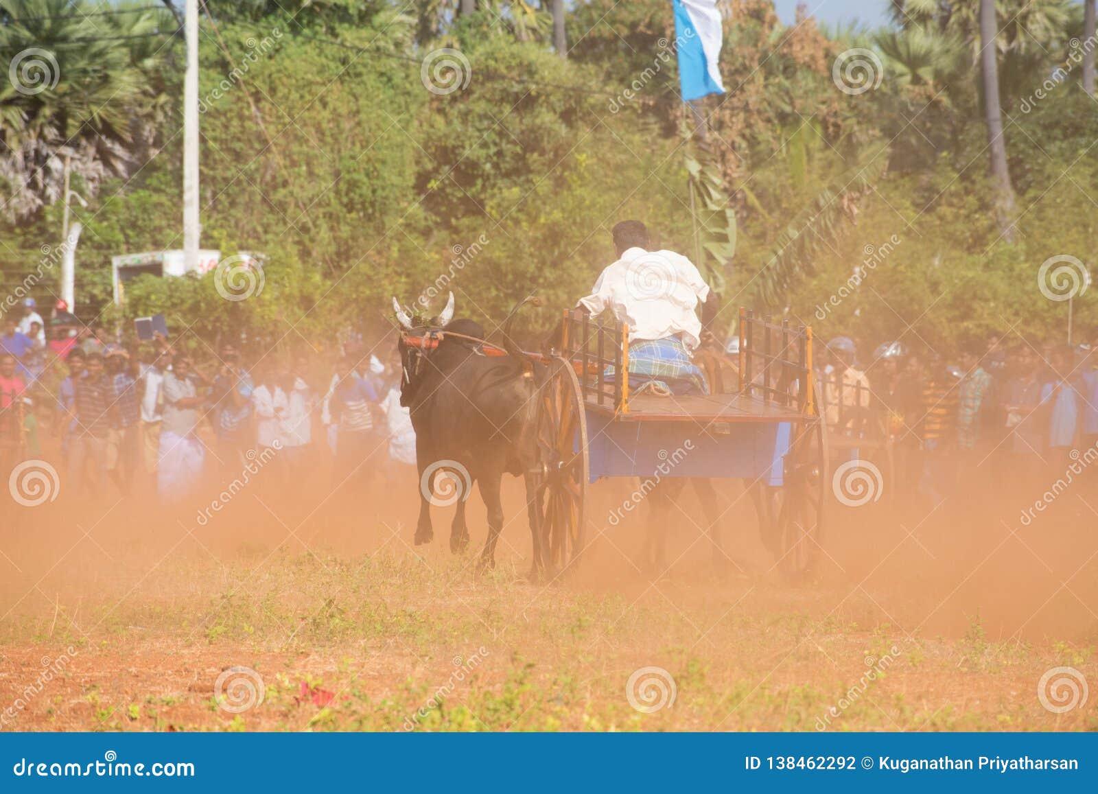 Actividad recreativa tradicional del deporte en Jaffna