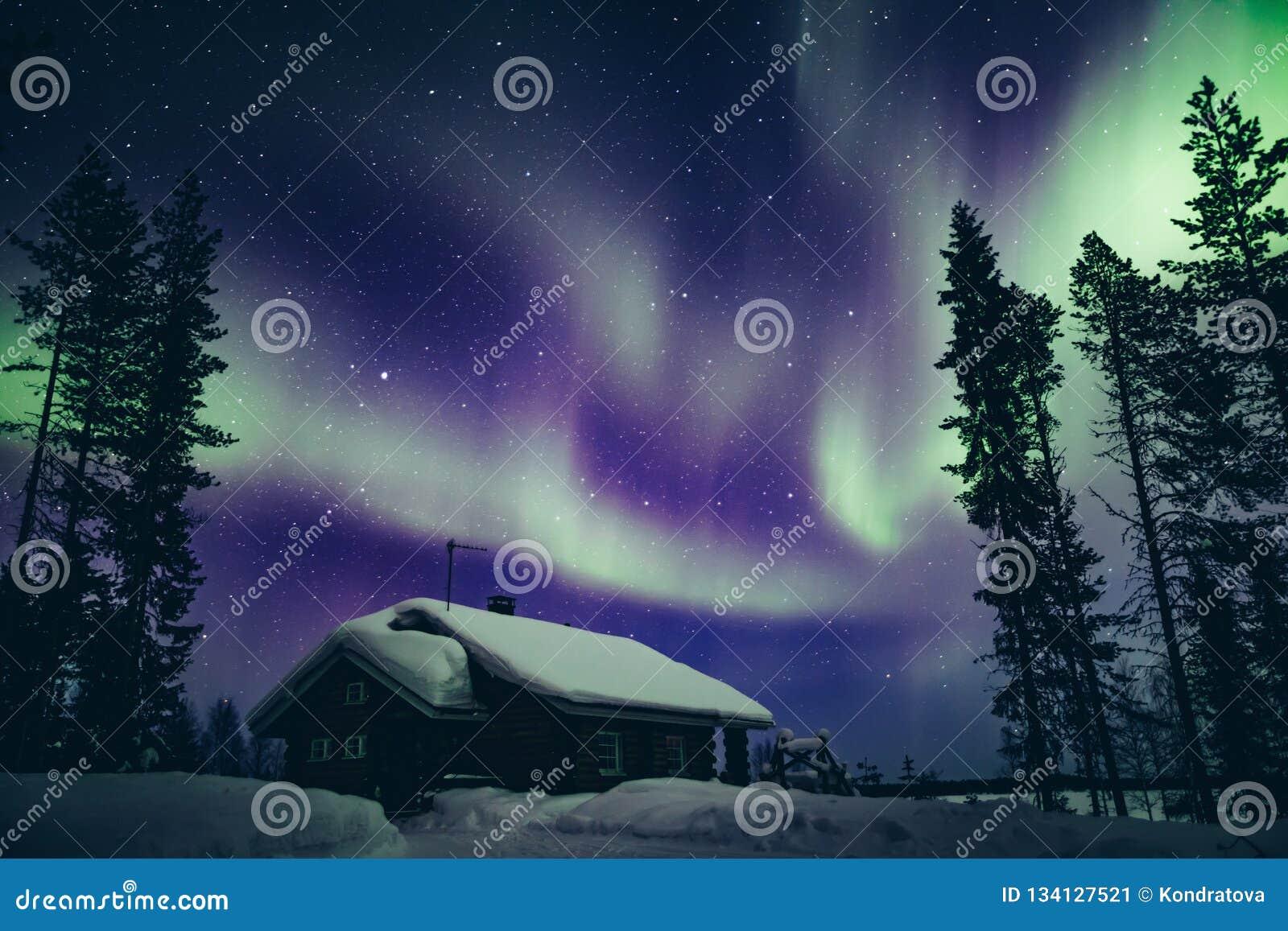 Activité arctique polaire colorée d Aurora Borealis de lumières du nord en hiver Finlande