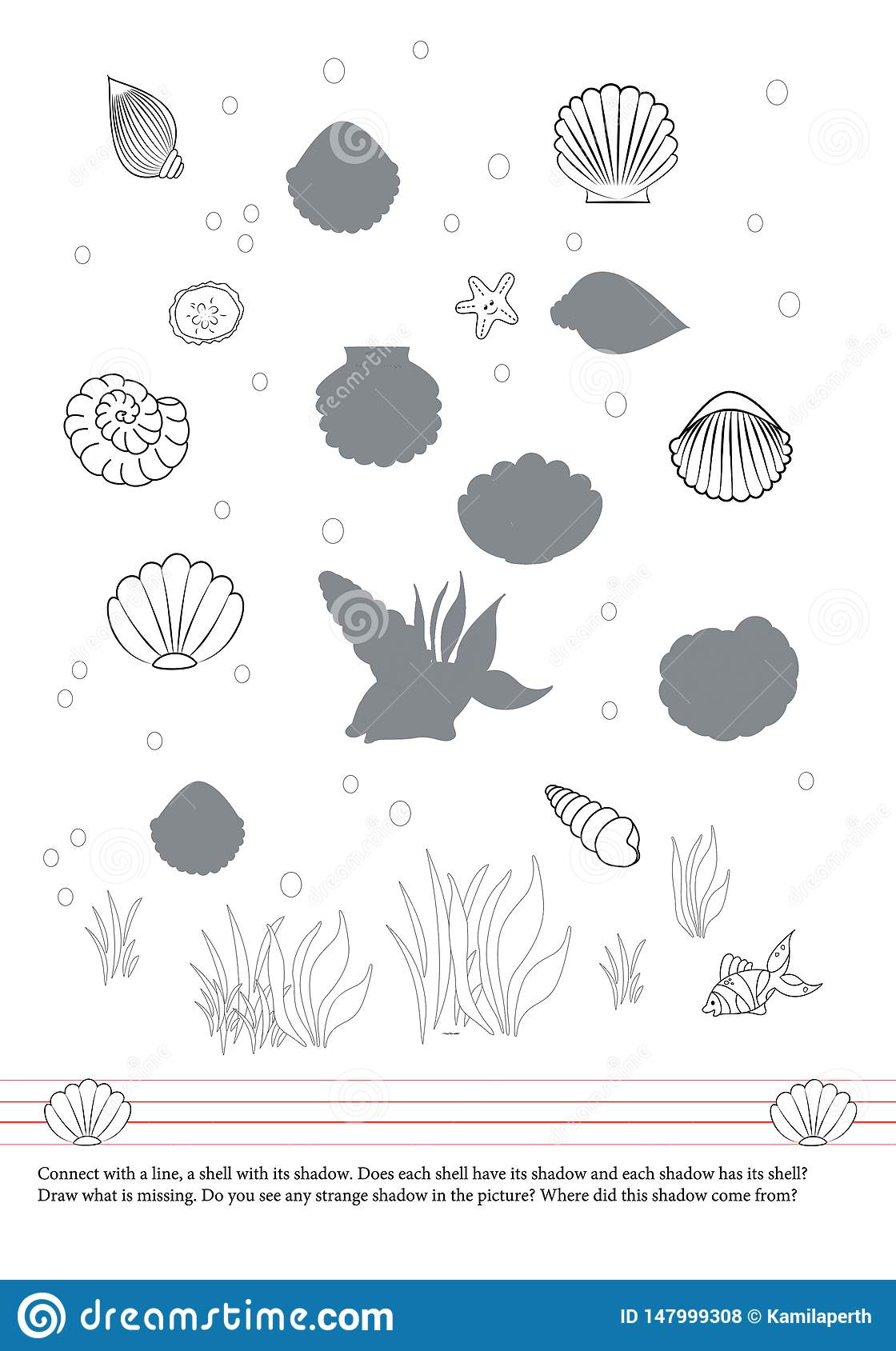 Activities book for children. Shells. Fish. Shadows. Drawing