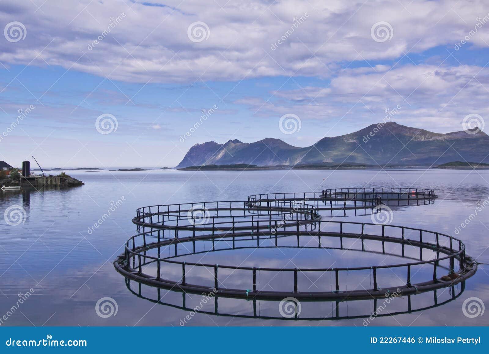 Acuacultura en Noruega