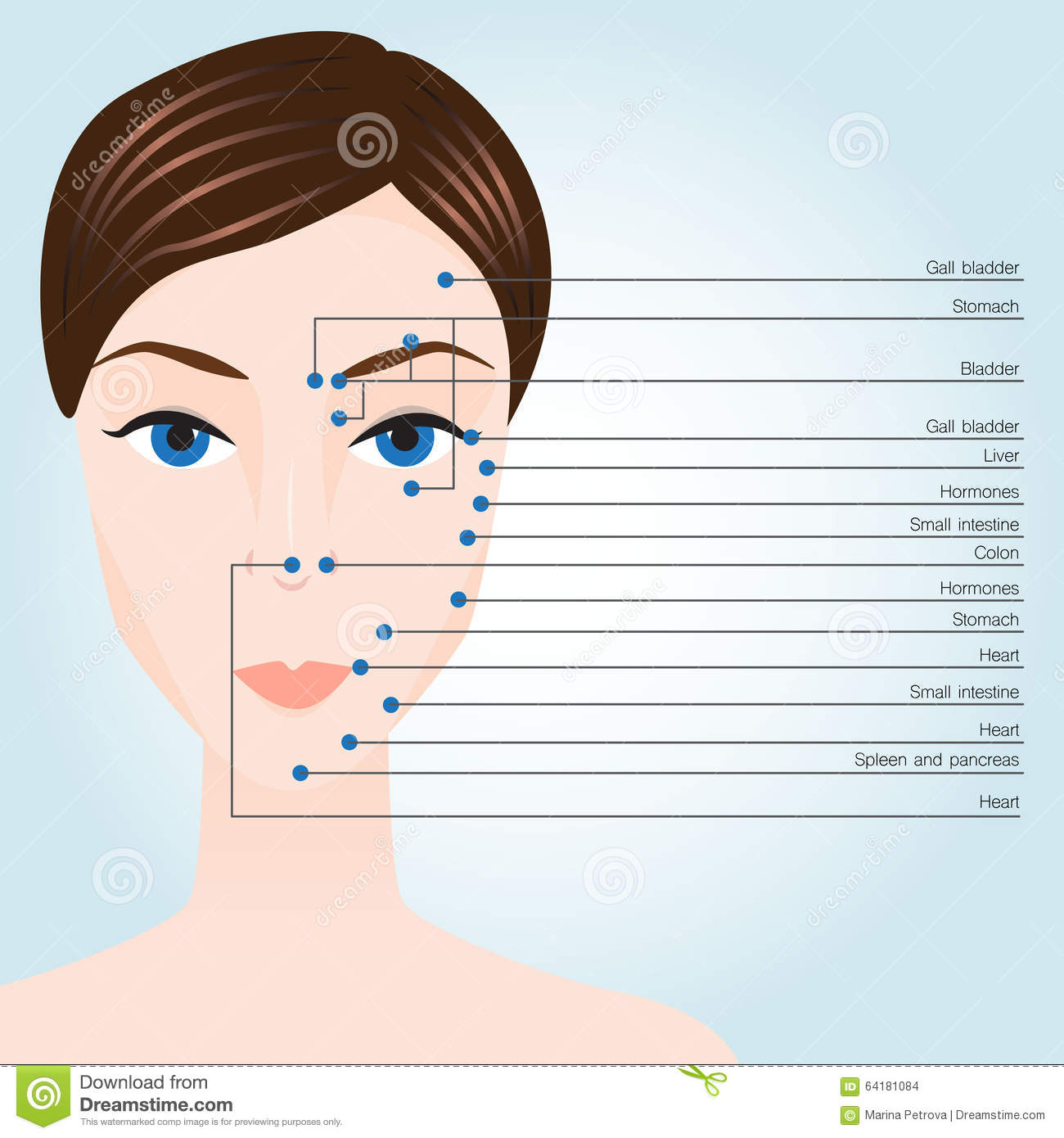 Acupuncture points on face stock illustration ...