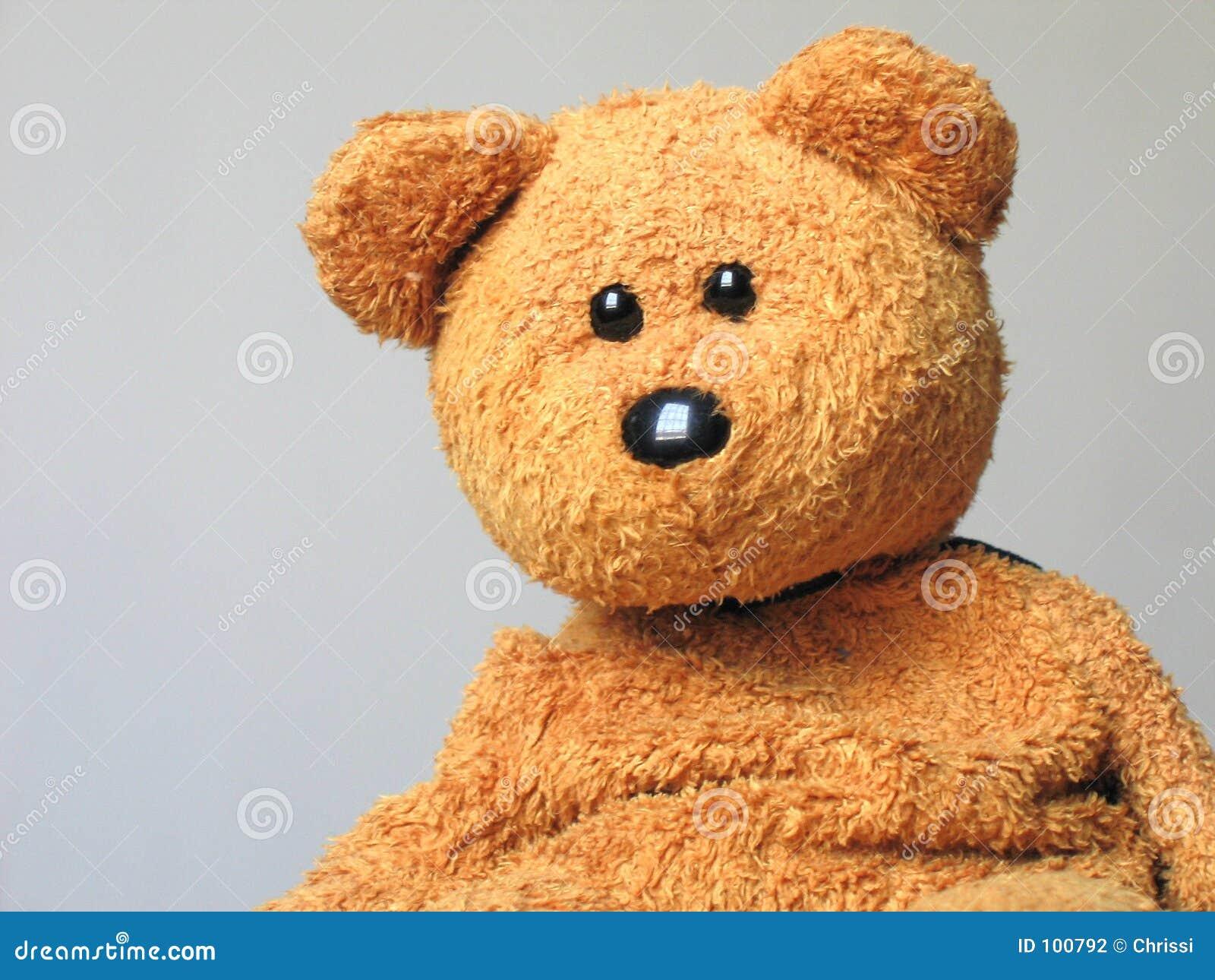Adam, der Teddybär