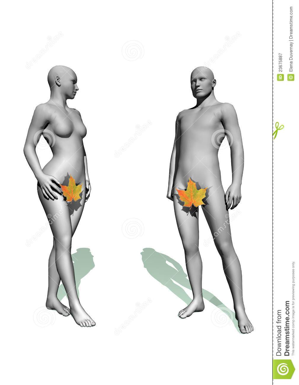 adam and eve royalty free stock photography image 23675887
