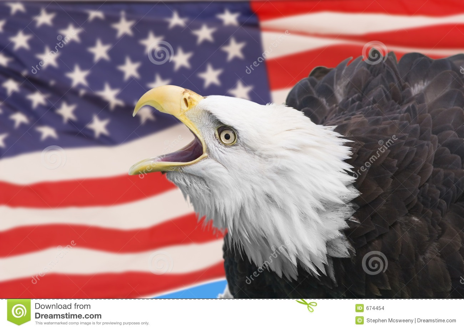 Adelaar met vlag