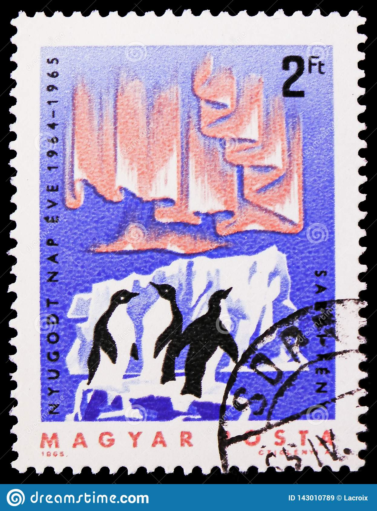 Adelie Penguin Pygoscelis adeliae, Aurora Borealis, International Quiet Sun Years serie, circa 1965