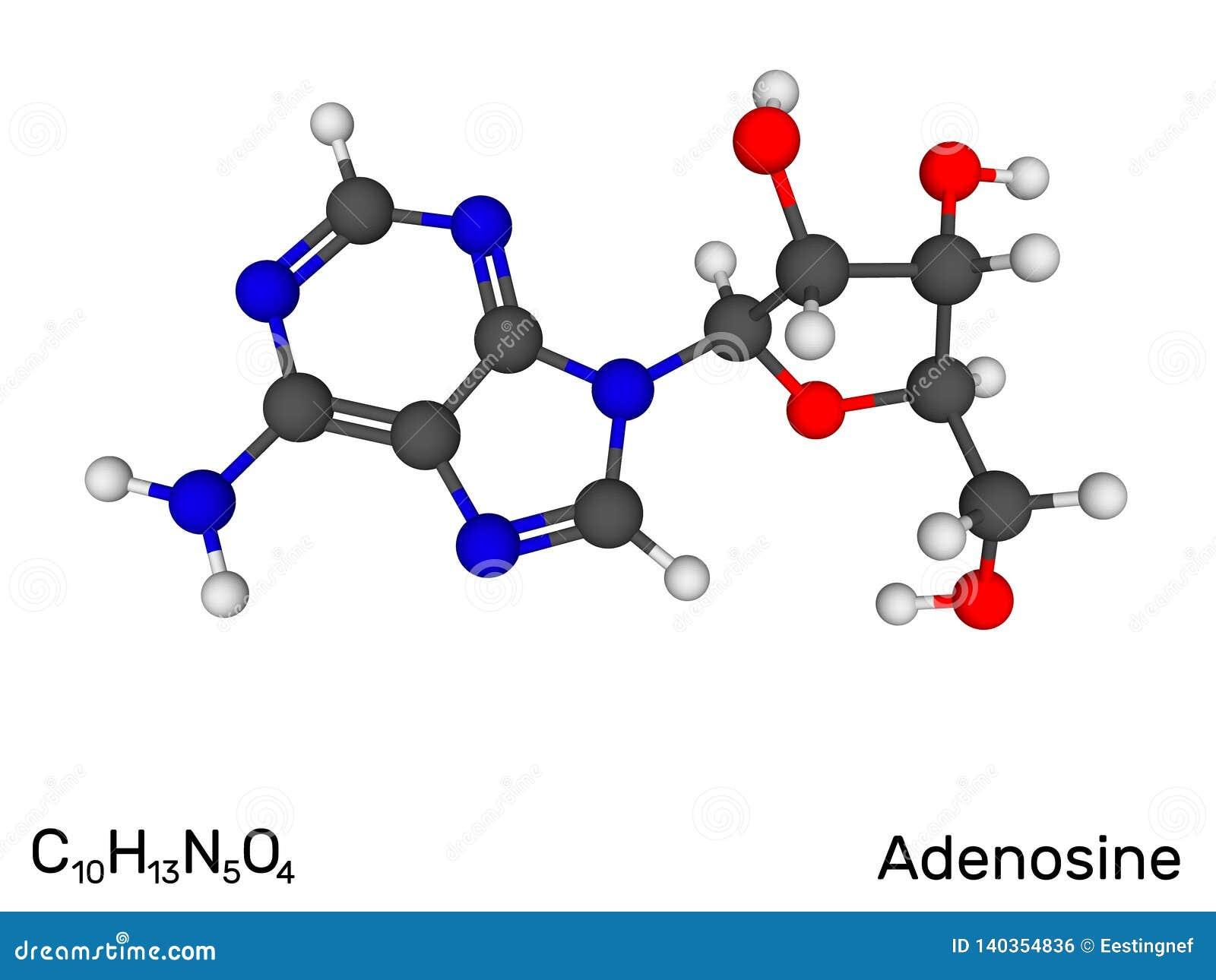 Adenosina, nucleosidico, molecola di modello del neurotrasmettitore