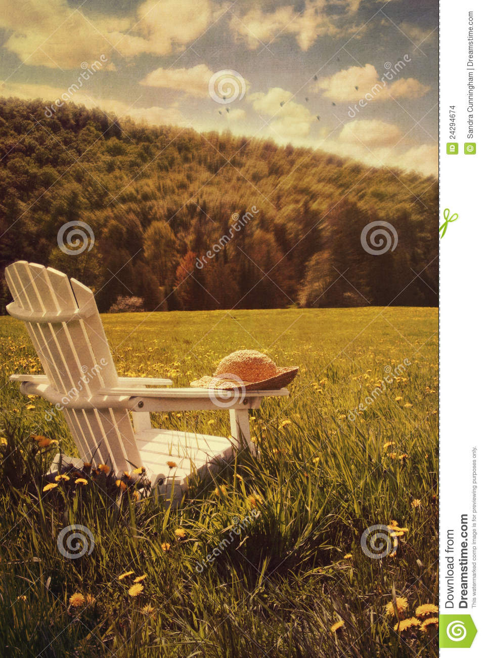 Adirondack Chair In A Field Of Grass Stock Images Image