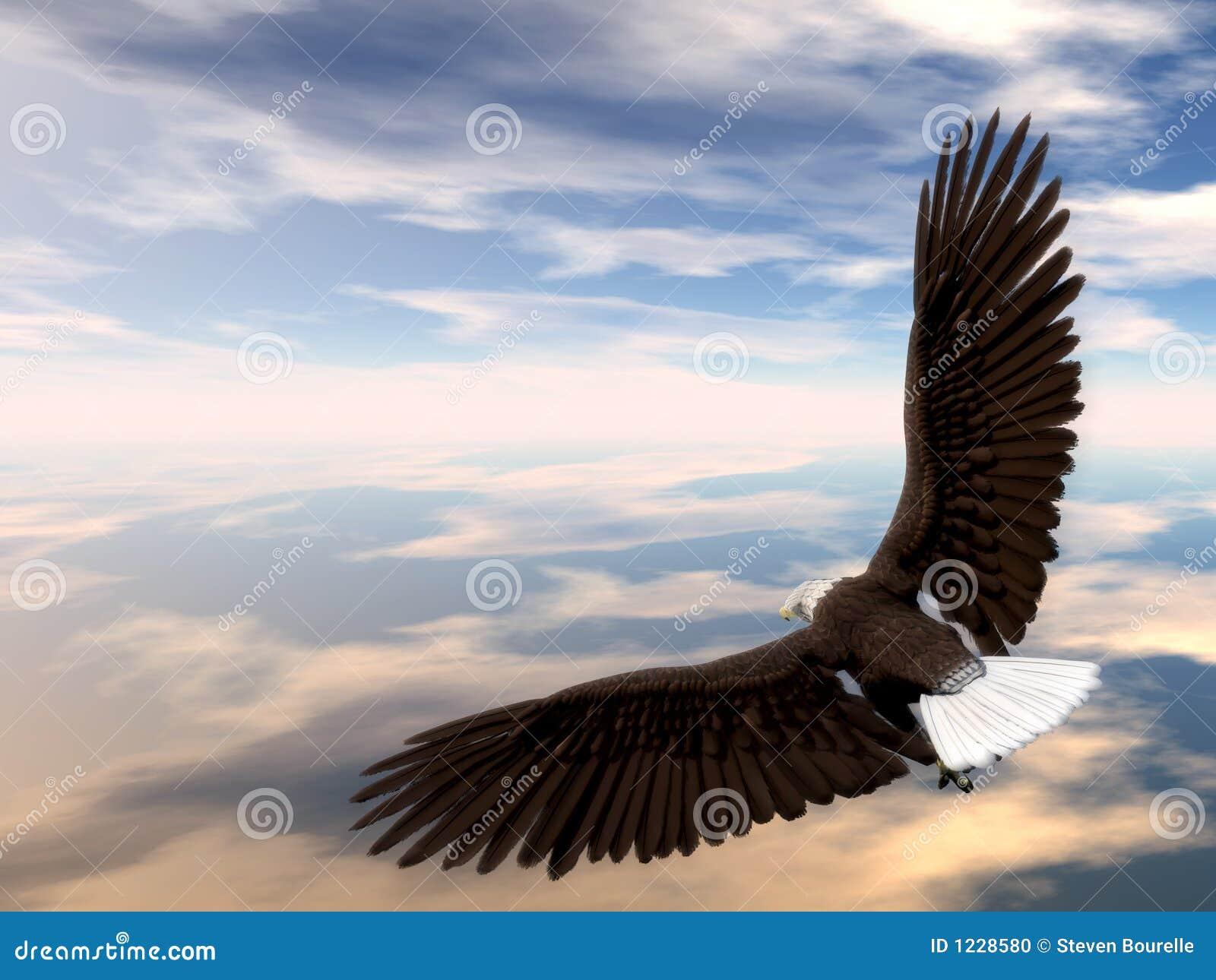 Adler-Ansteigen