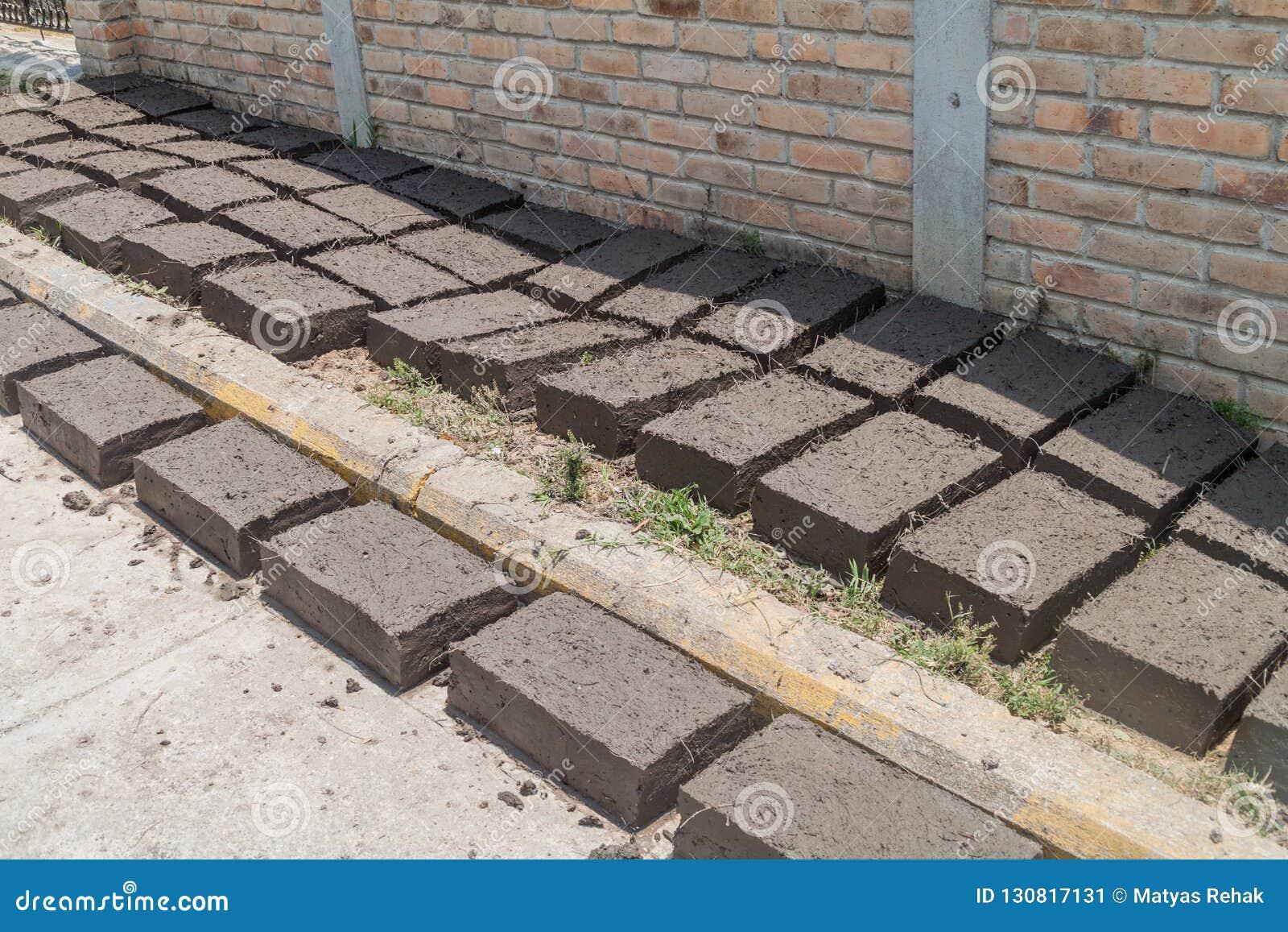 Adobe bricks dry in La Campa village, Hondur