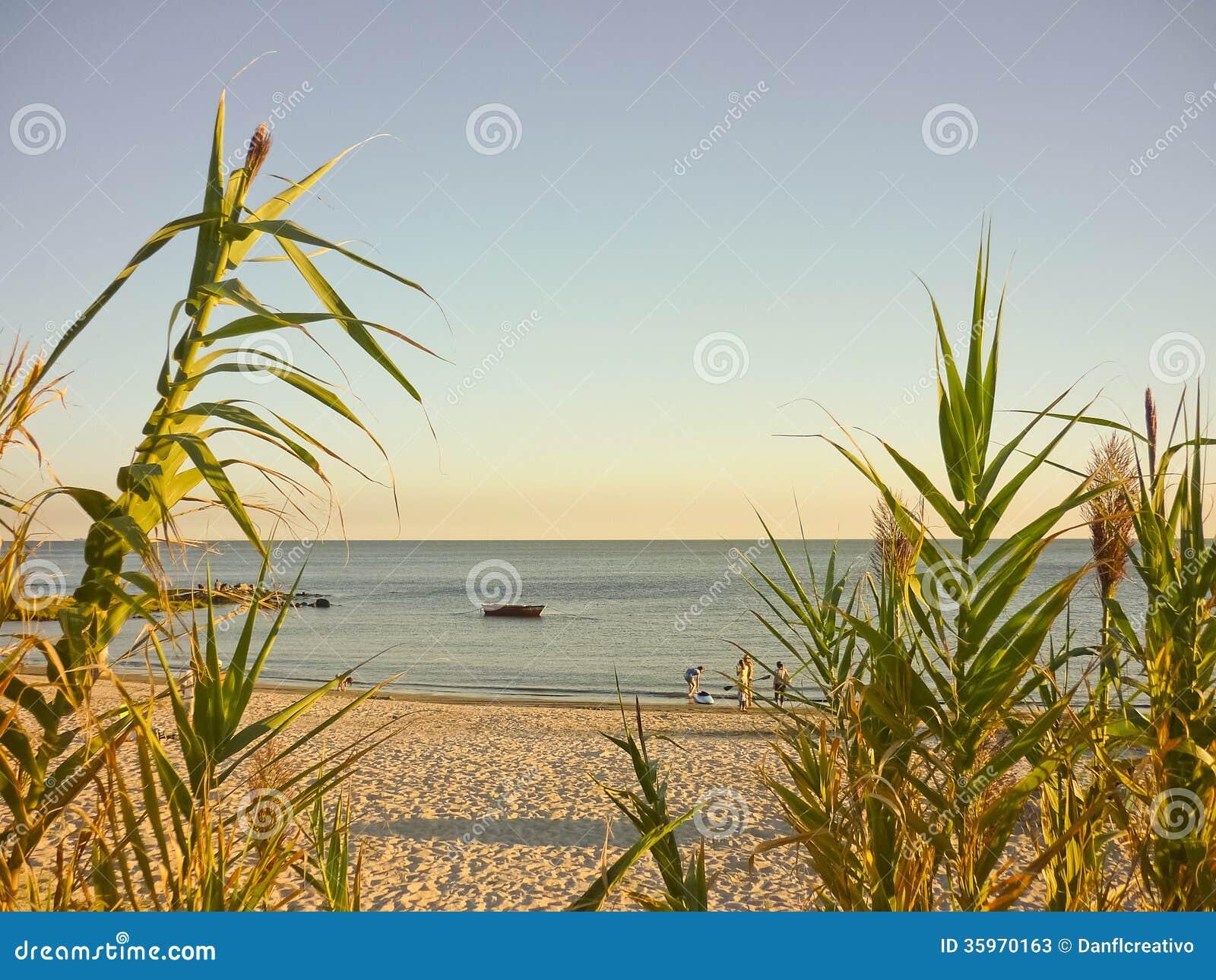 Adolescencias y un barco solo en la playa