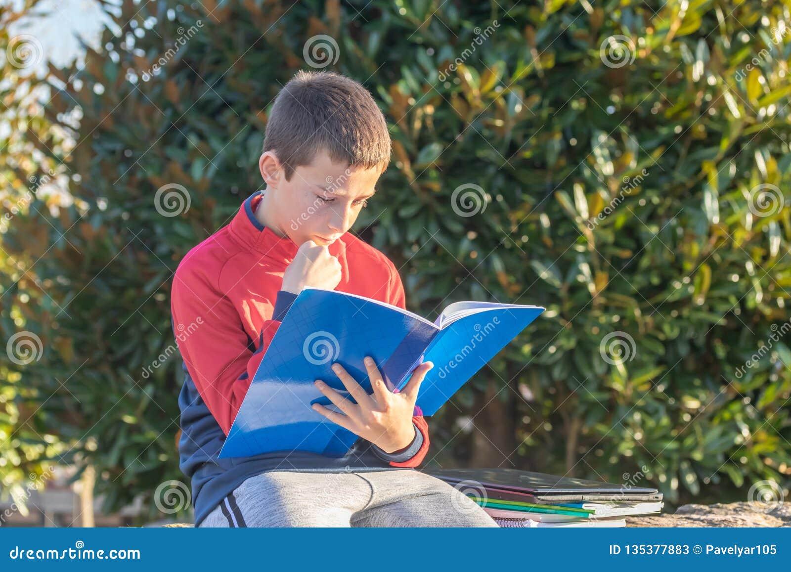 Adolescente sério com os livros de texto e os cadernos que fazem trabalhos de casa e que preparam-se para o exame no parque