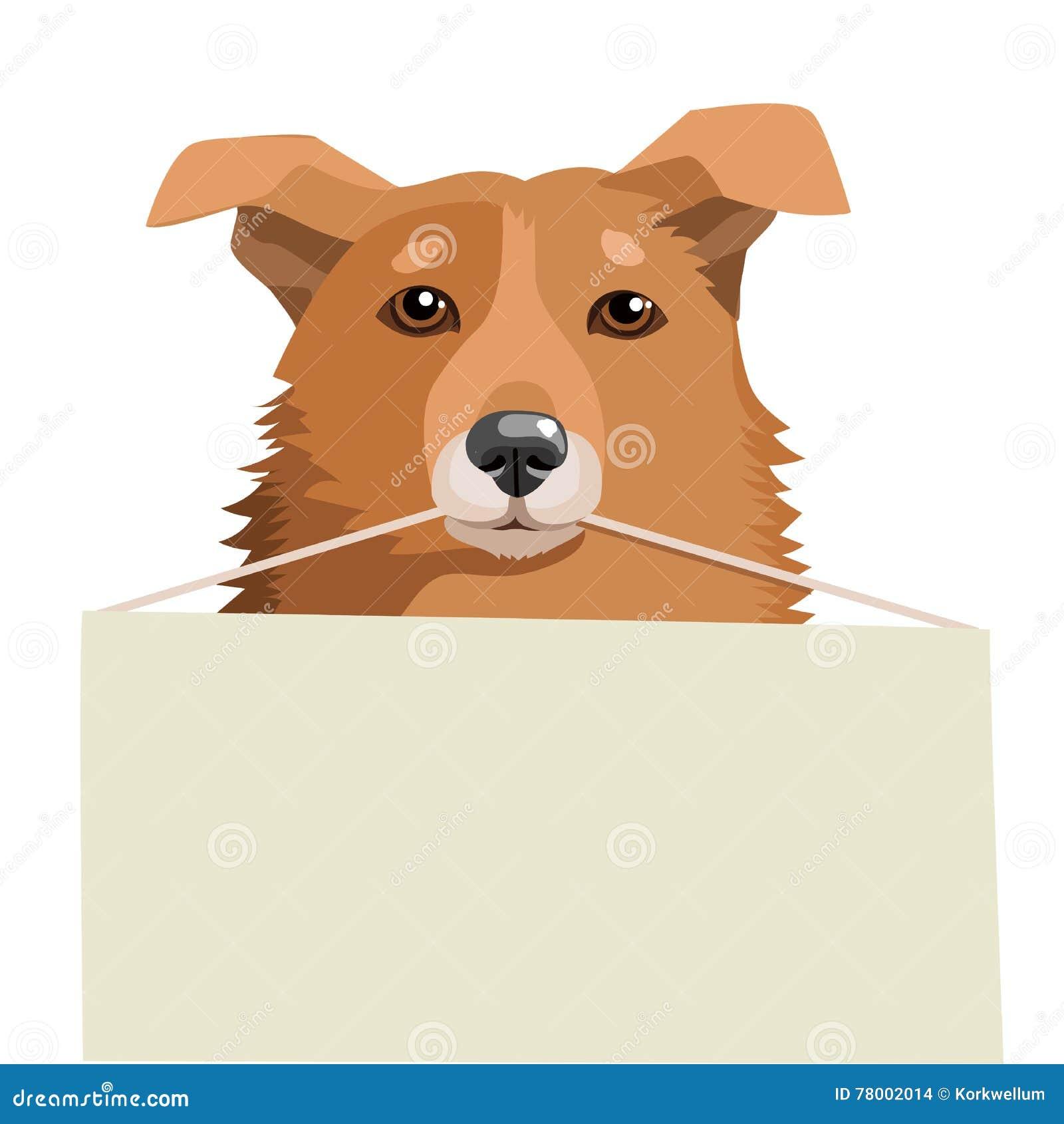 Adoption Dog Near Me Dog Shelters Free Animals For Adoption