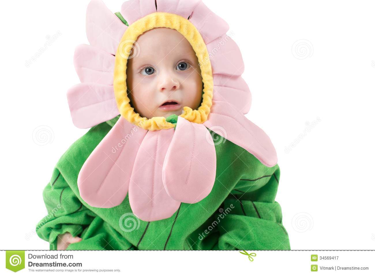 Adorable Baby Boy, Dressed In Flower Costume On White ...