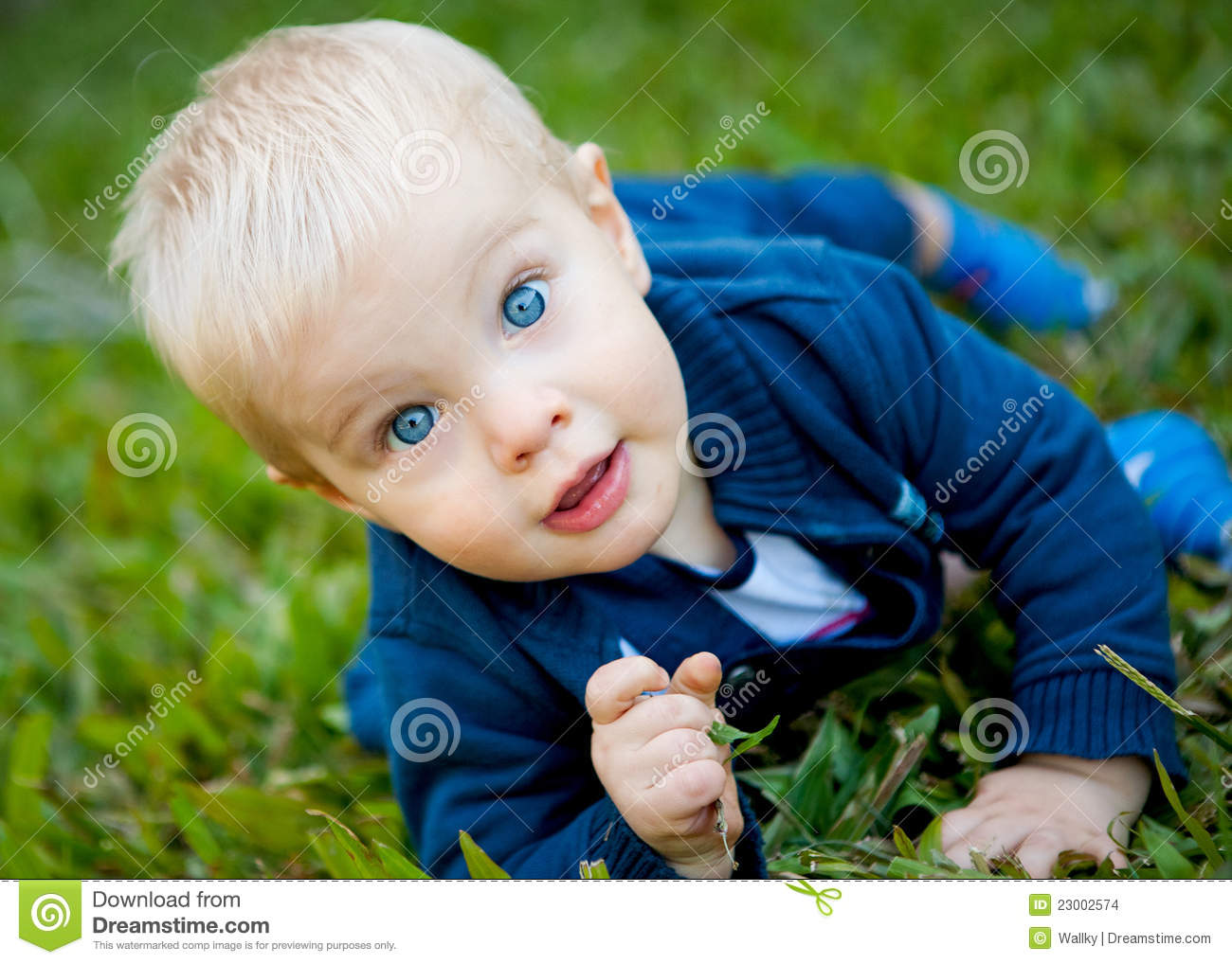 A Adorable Baby Boy On The Green Grass Stock Images