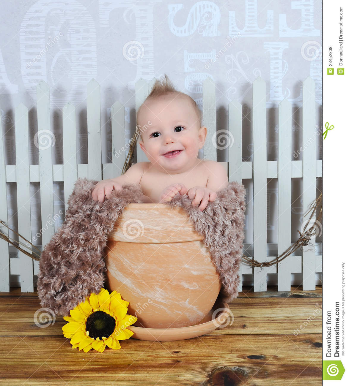 Adorable Baby Boy Sitting In Clay Flower Pot Stock Photo