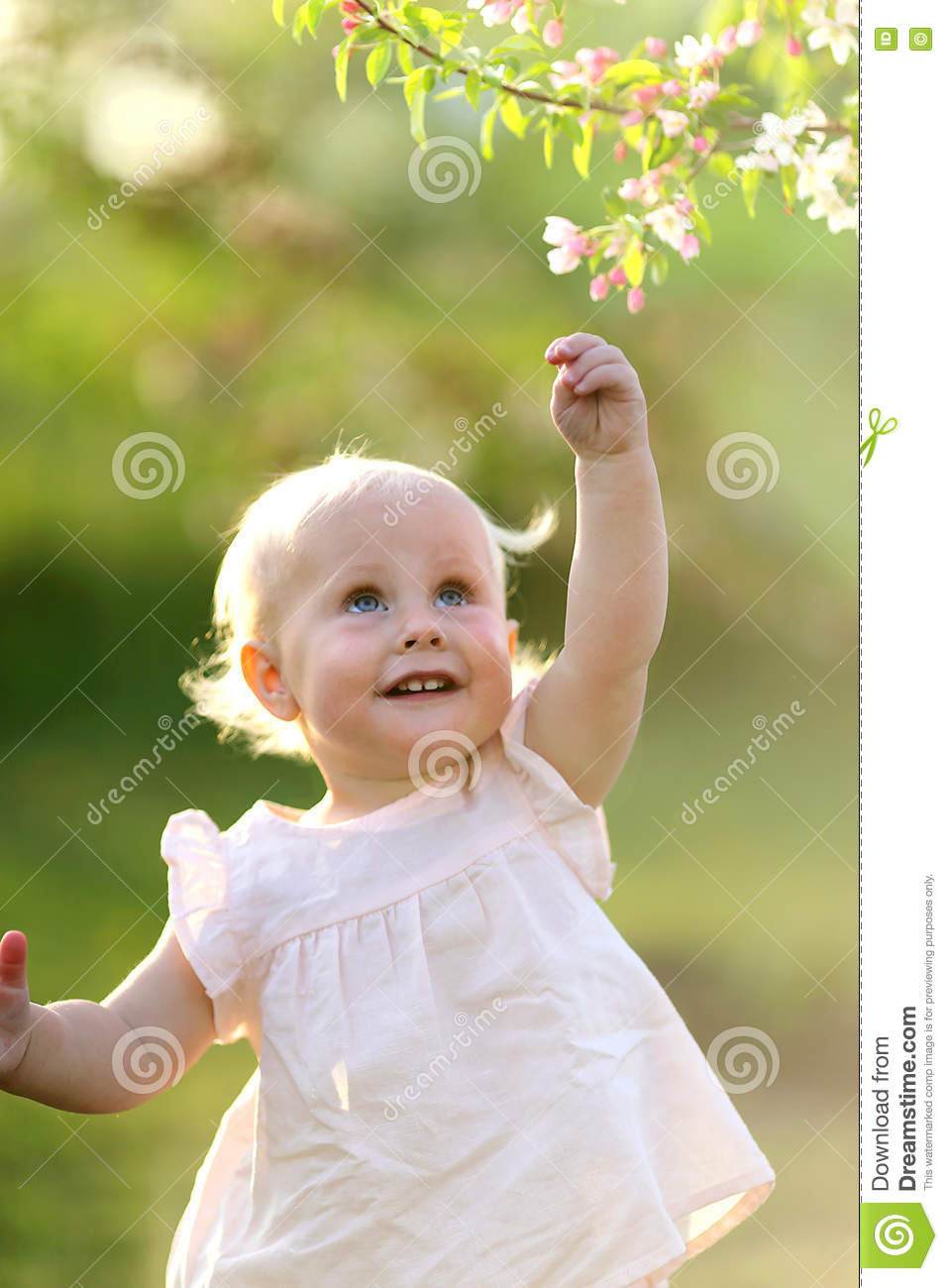 adorable baby girl at sunset reaching for flower in tree stock photo