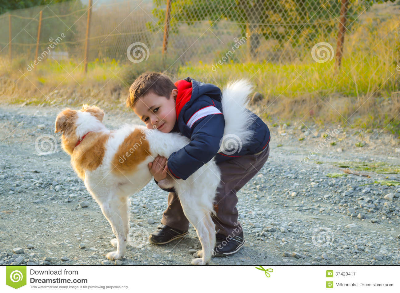 young boy hugging his dog royalty free stock photography