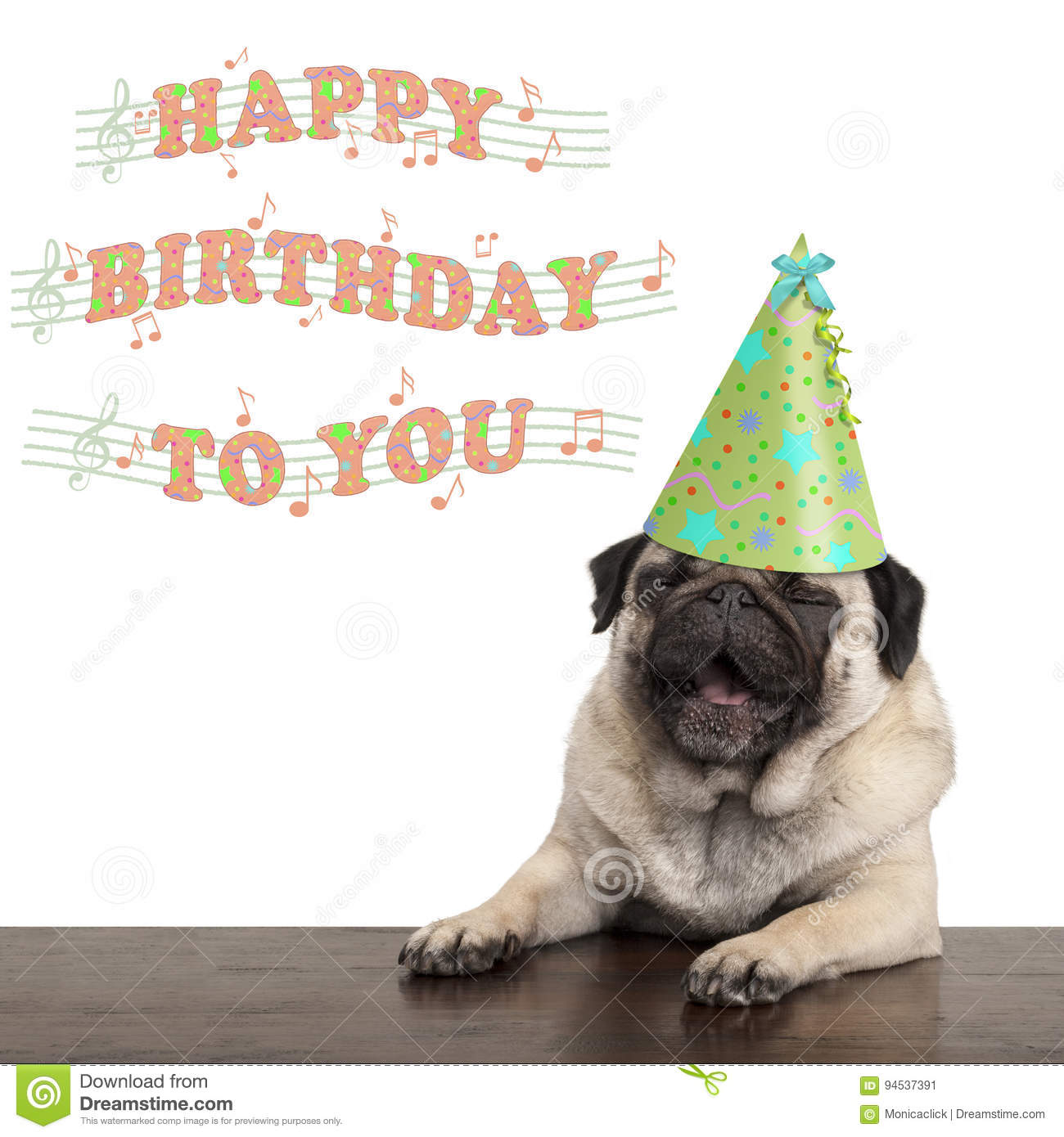 Adorable Cute Pug Puppy Dog Singing Happy Birthday To You Isolated On White Background Stock