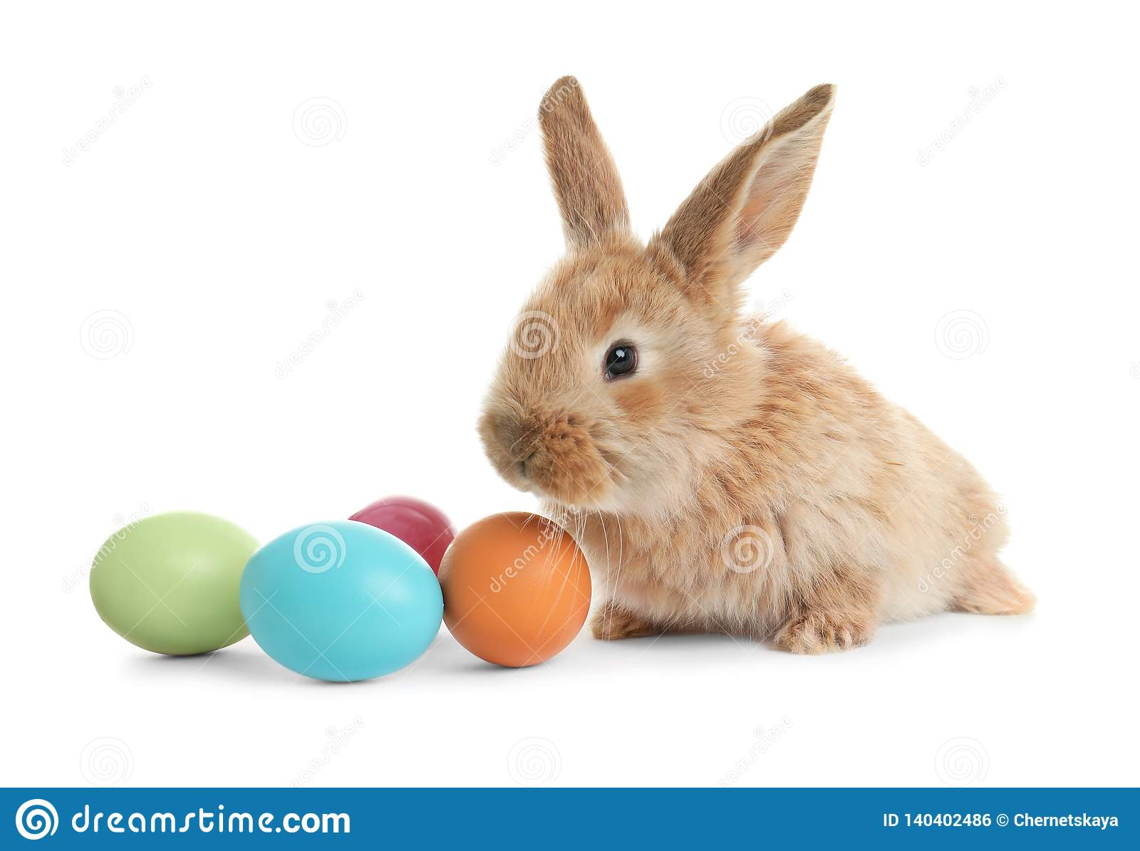 Adorable furry Easter bunny and colorful eggs on white