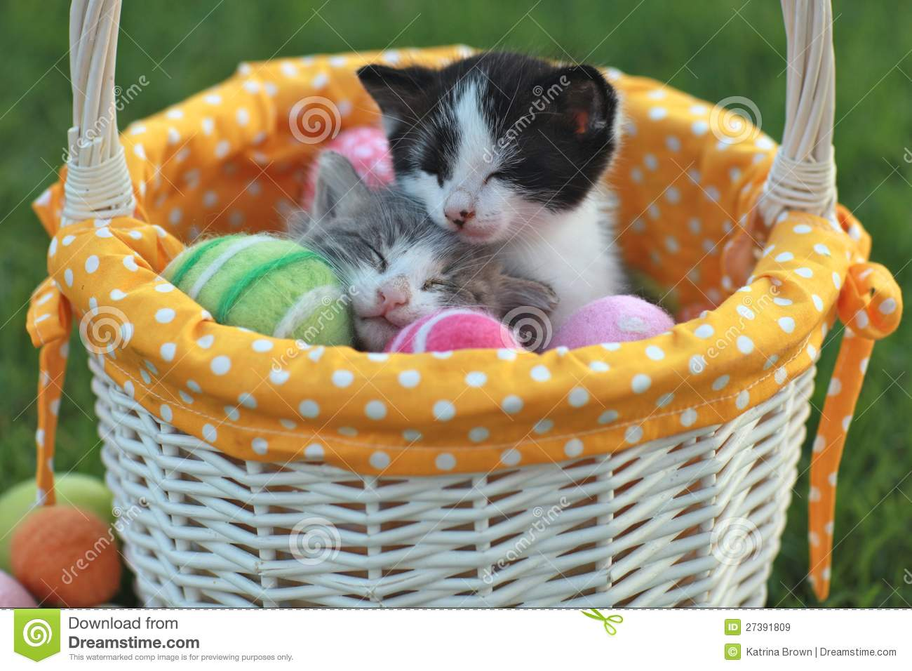 ... In A Holiday Easter Basket Royalty Free Stock Images - Image: 27391809