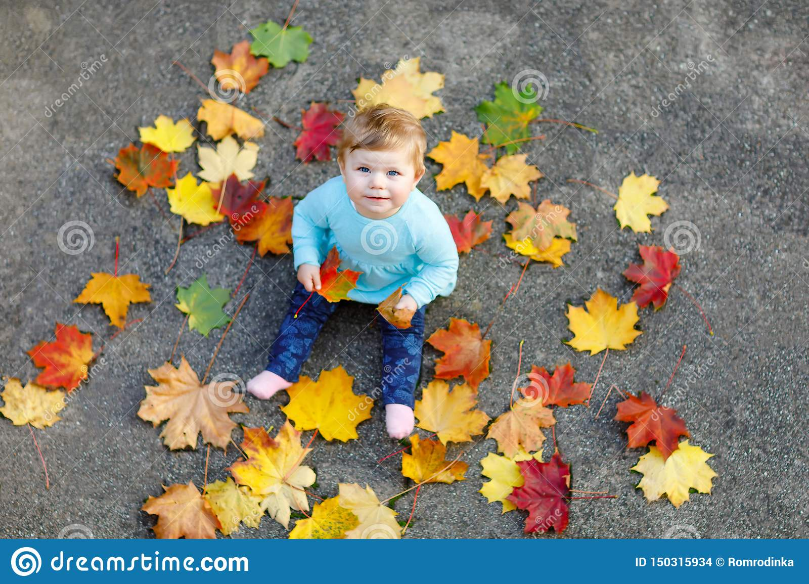 Adorable little baby girl in autumn park on sunny warm october day with oak and maple leaf. Fall foliage. Family outdoor