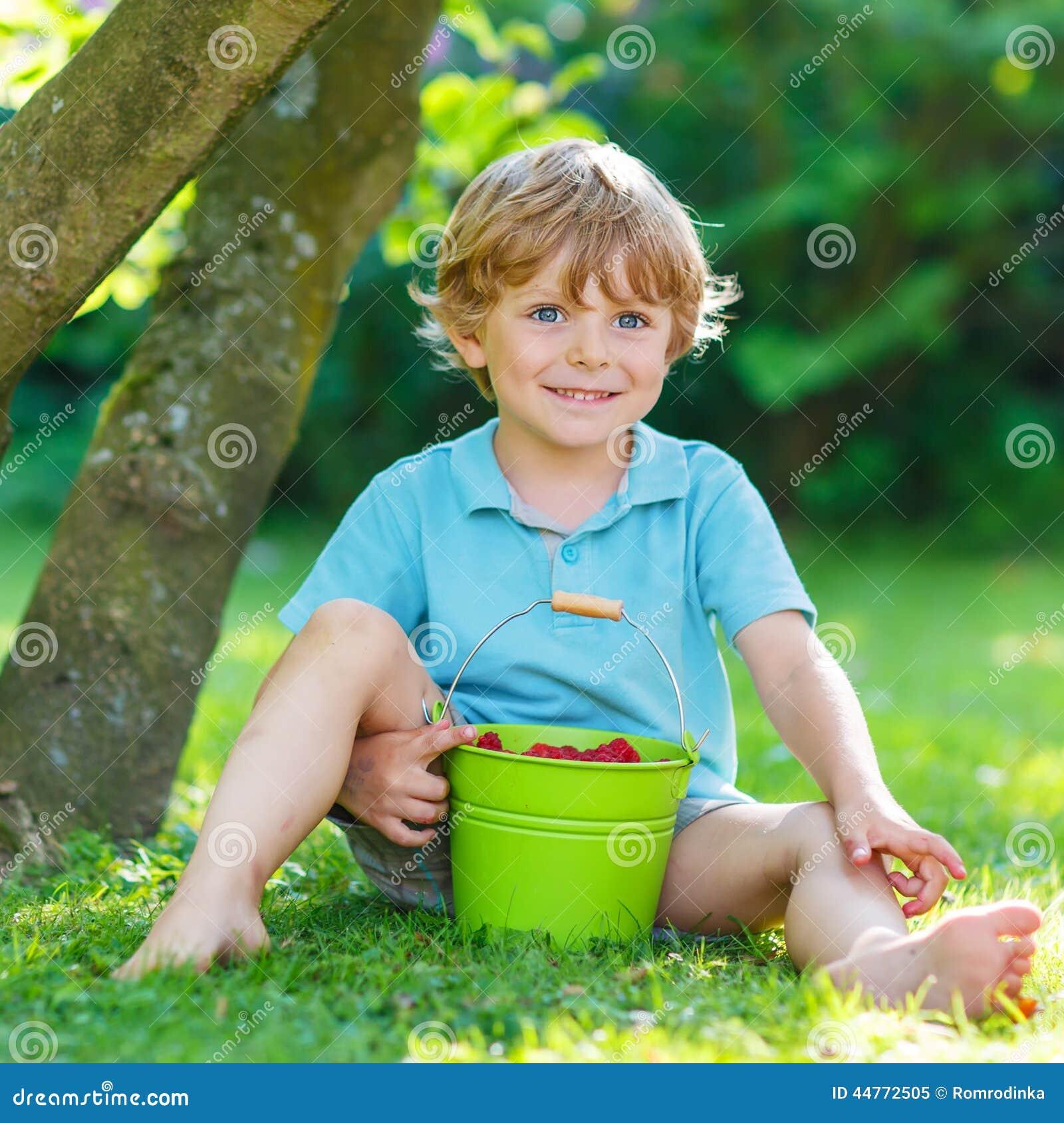 Adorable little preschool kid boy eating raspberries in home s g