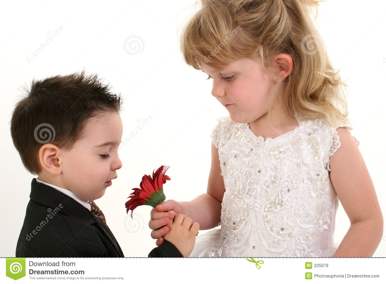 Download Adorable Young Children Smelling Daisy Together Stock Image - Image of blond, black: 225079
