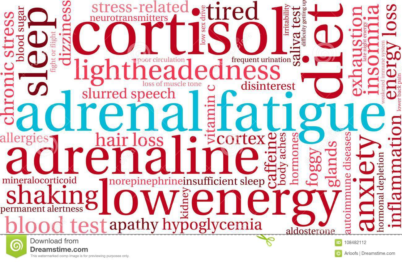 Adrenal Fatigue Word Cloud stock vector  Illustration of