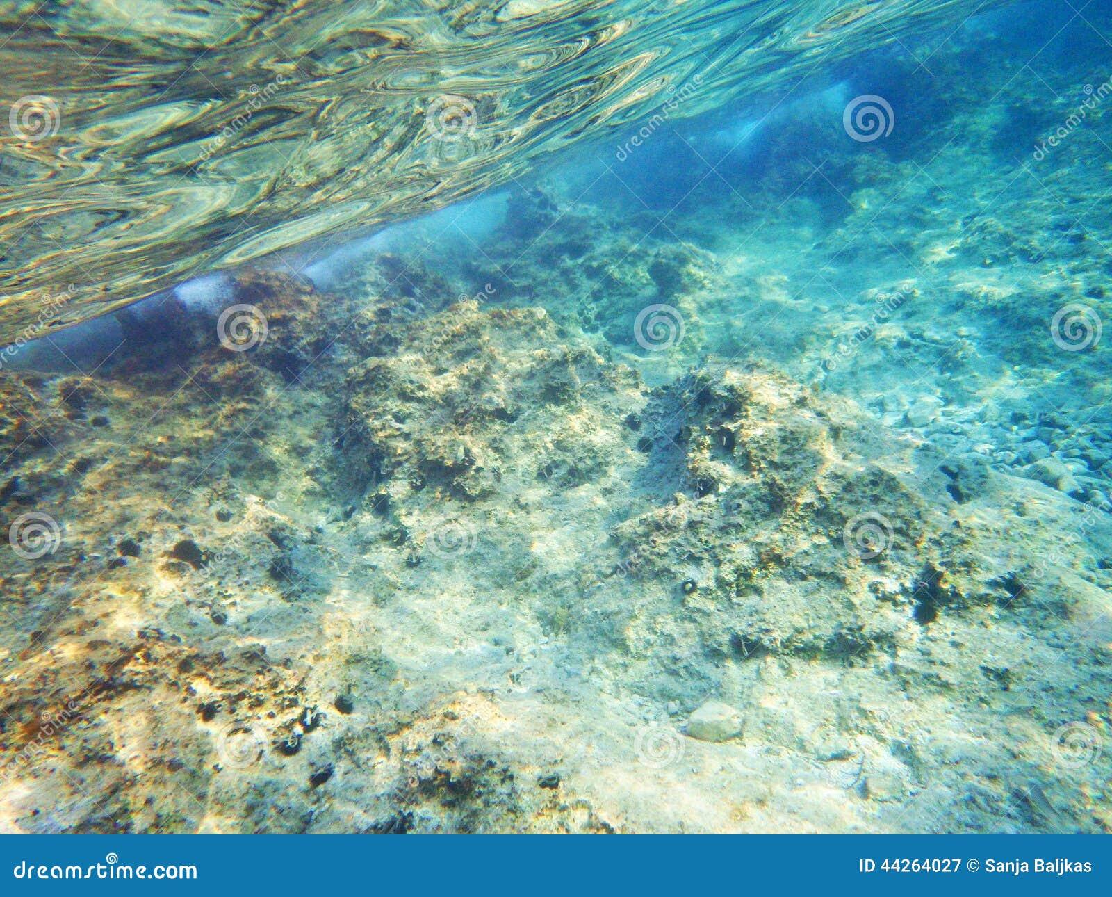 Adriatische overzeese bodem