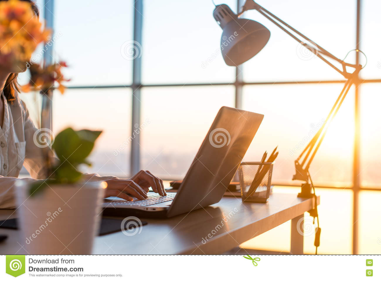 Adult businesswoman working at home using computer, studying business ideas on a pc screen