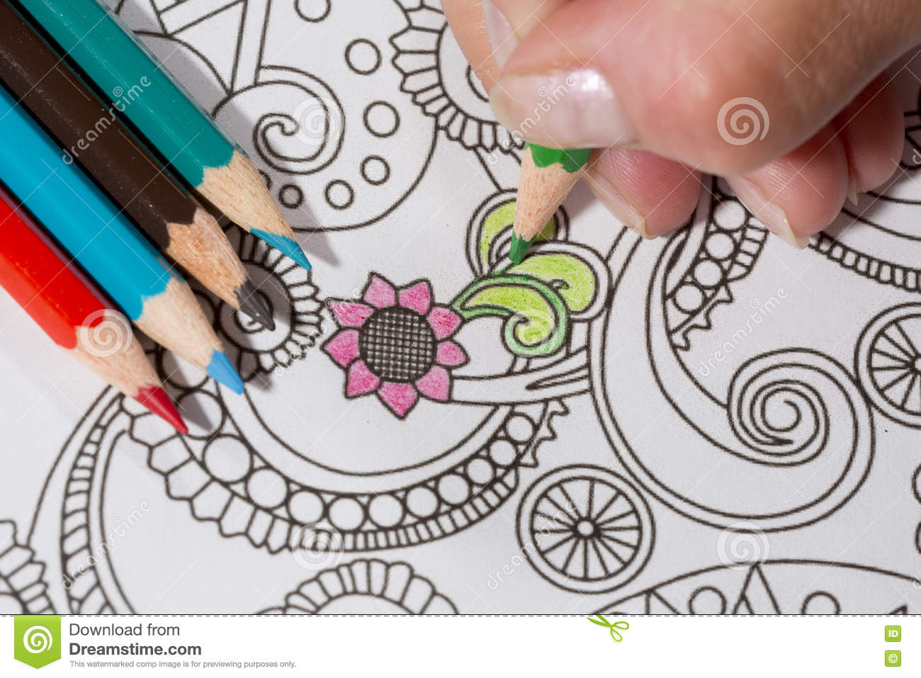 An Image Of A New Trendy Thing Called Adults Coloring Book The Idea Is That Person Illustrative And Detailed Pattern For Stress Relieve